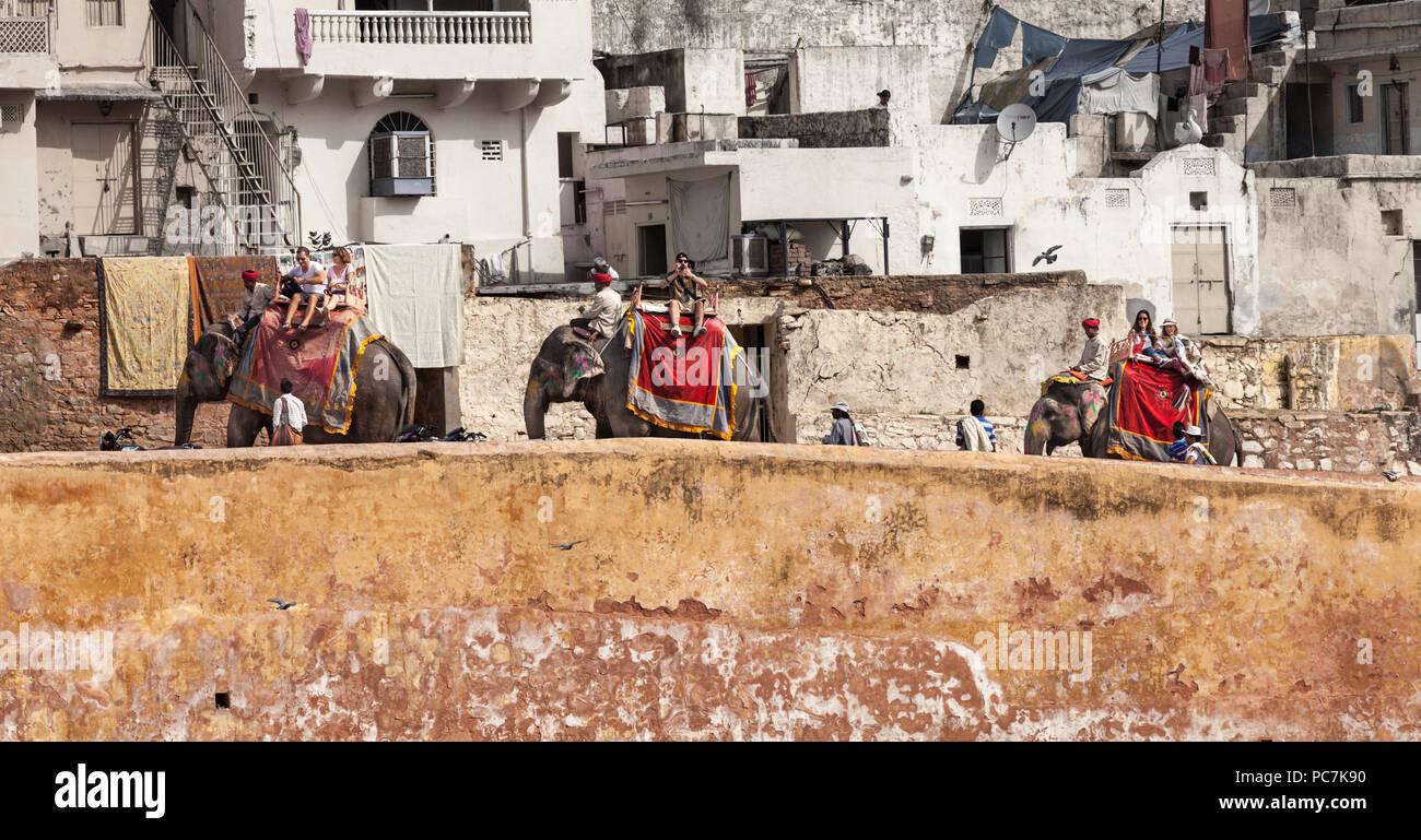 Tres elefantes para llevar a los turistas hasta el Palacio ámbar / Fuerte Amer Foto de stock