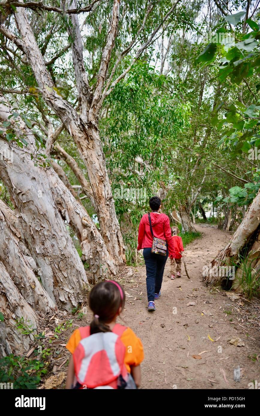 Una madre camina con sus hijos a través de un bosque, Booroona sendero en el Ross River, Rasmussen QLD 4815, Australia Foto de stock
