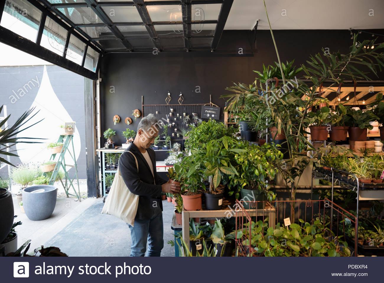 Hombre maduro, compras en la tienda de planta Imagen De Stock