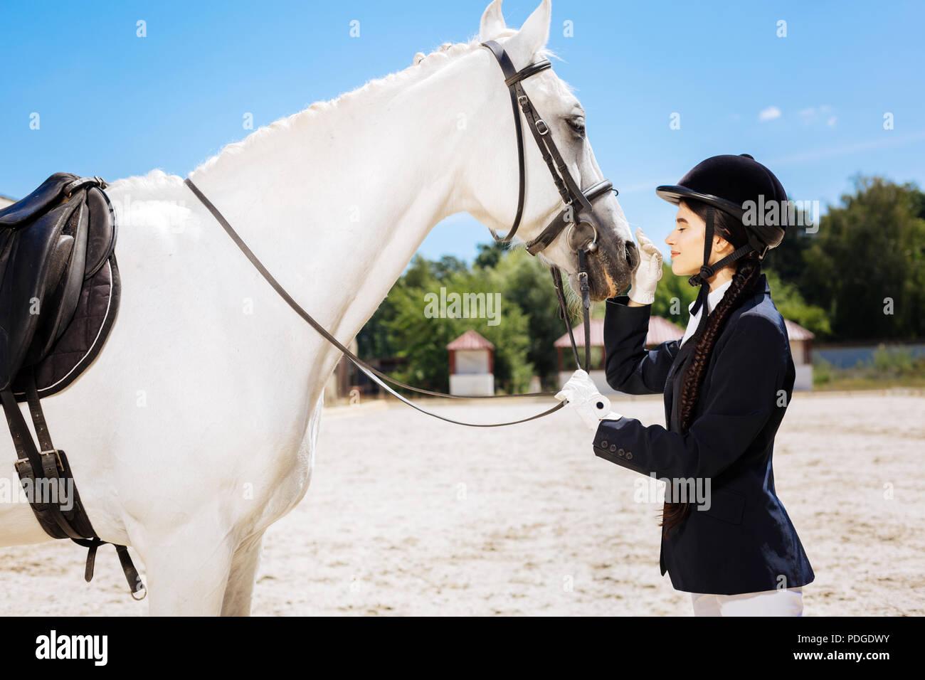 Hermosa mujer delgada amar hípica mirando a caballo blanco Imagen De Stock