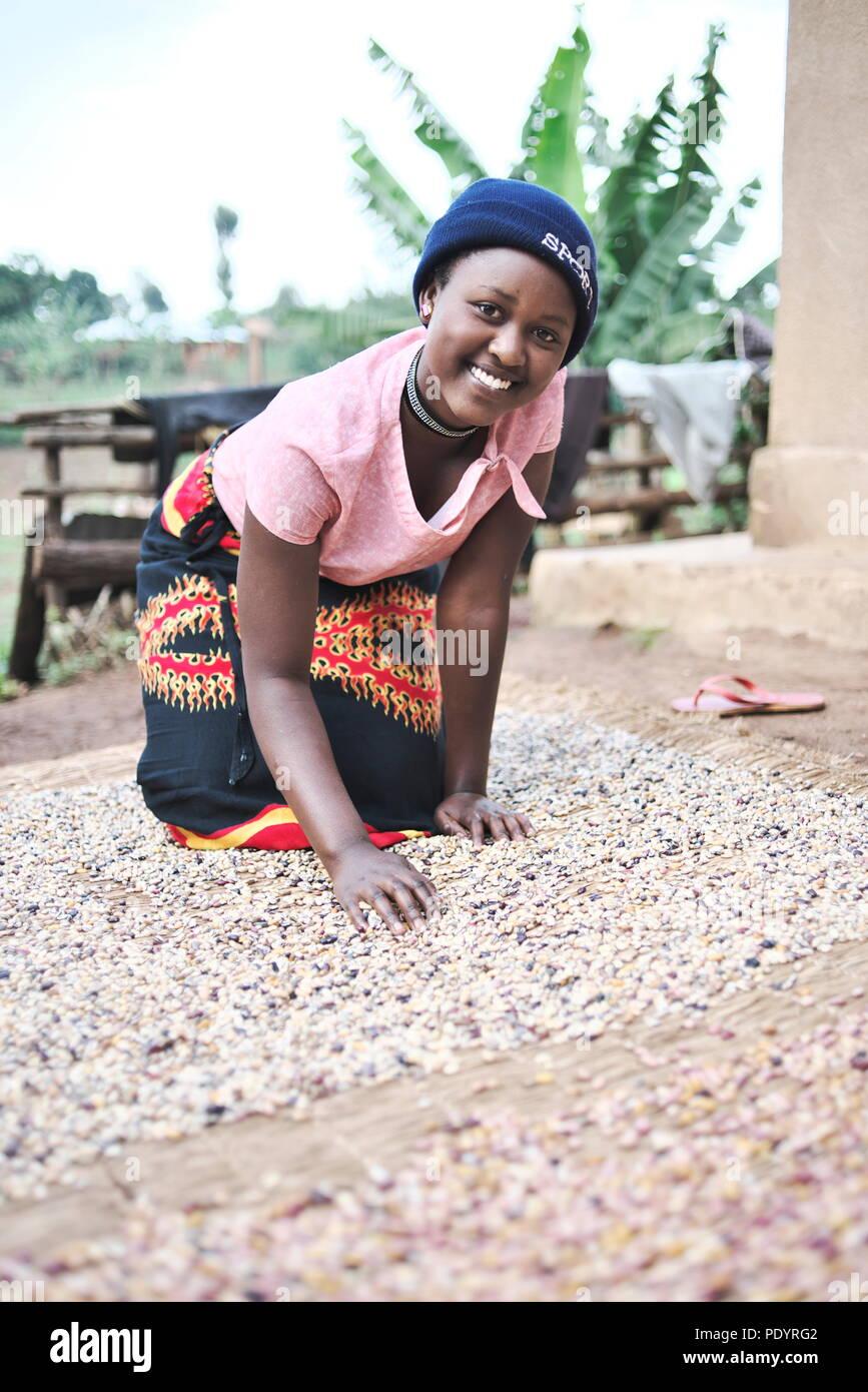 Joven ugandesa está en casa cuidando de sus granos y semillas en la Uganda rural Imagen De Stock