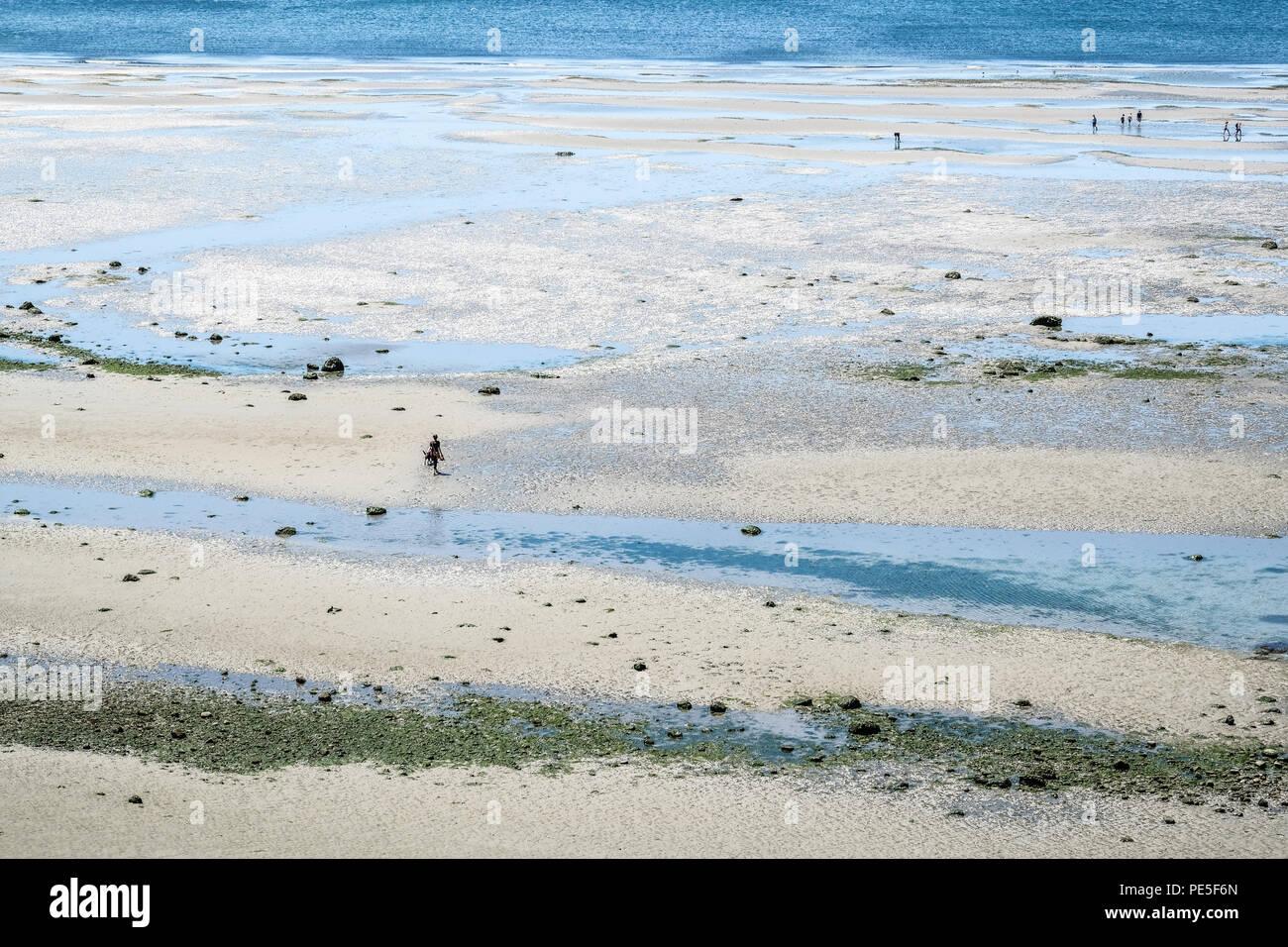 La Gente Caminando En La Playa Desnuda Durante Marea Baja Foto