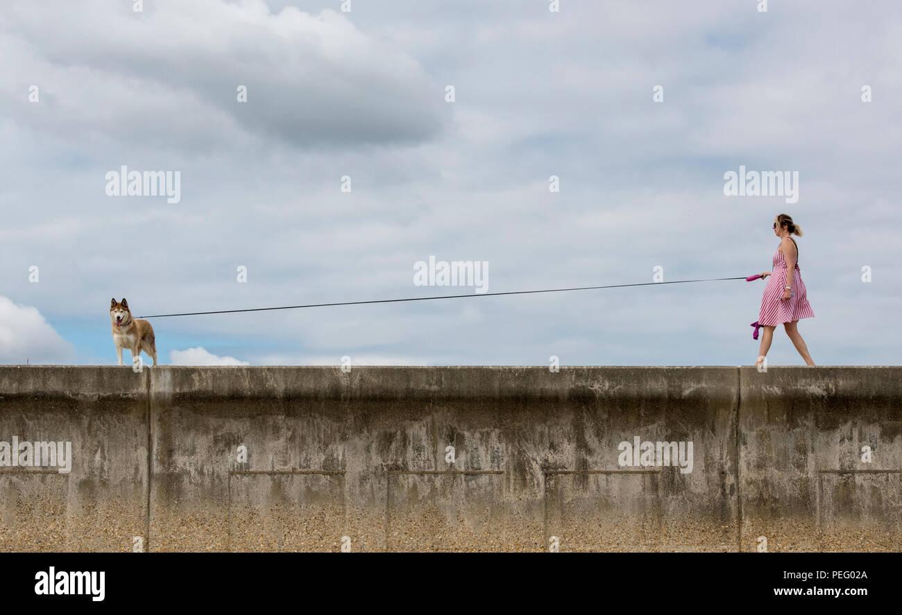 Una joven mujer paseando un perro a lo largo de una pared de mar en el verano en un cable largo. Imagen De Stock