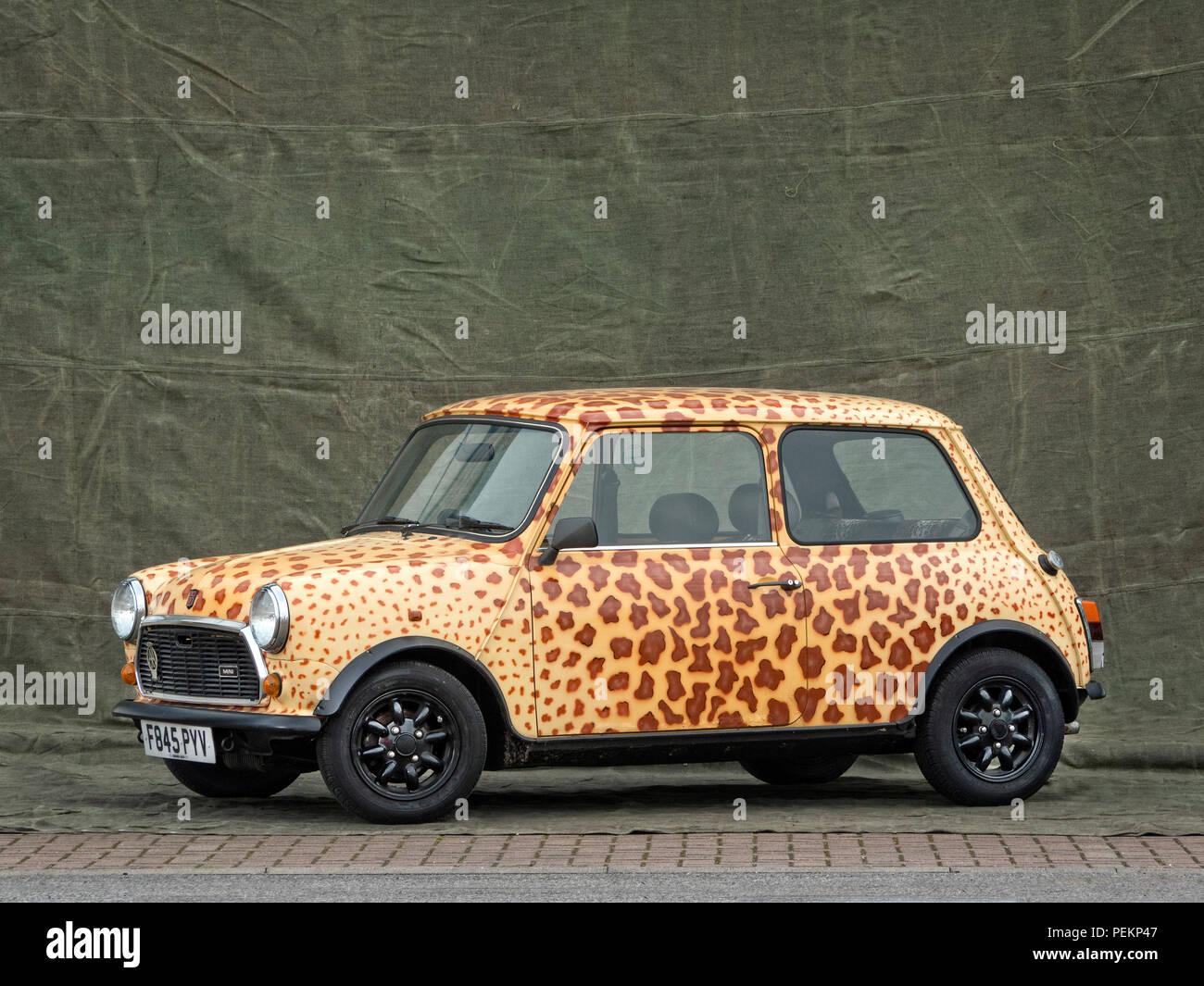 1989 Rover Mini diseño de piel de leopardo Imagen De Stock