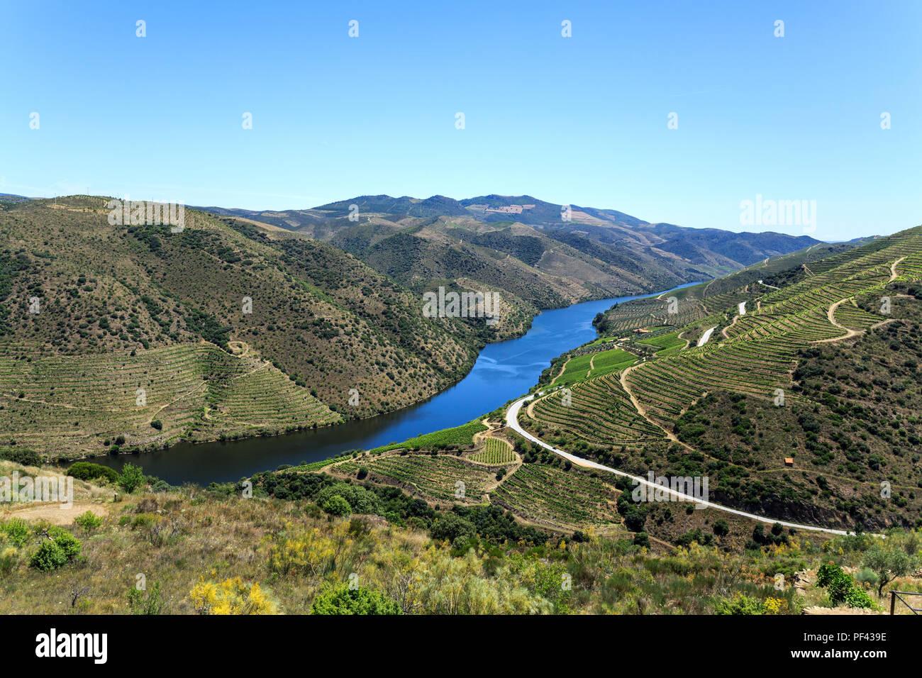 Magnífica Vista De La Baja Altitud Schisty Colinas Terrazas