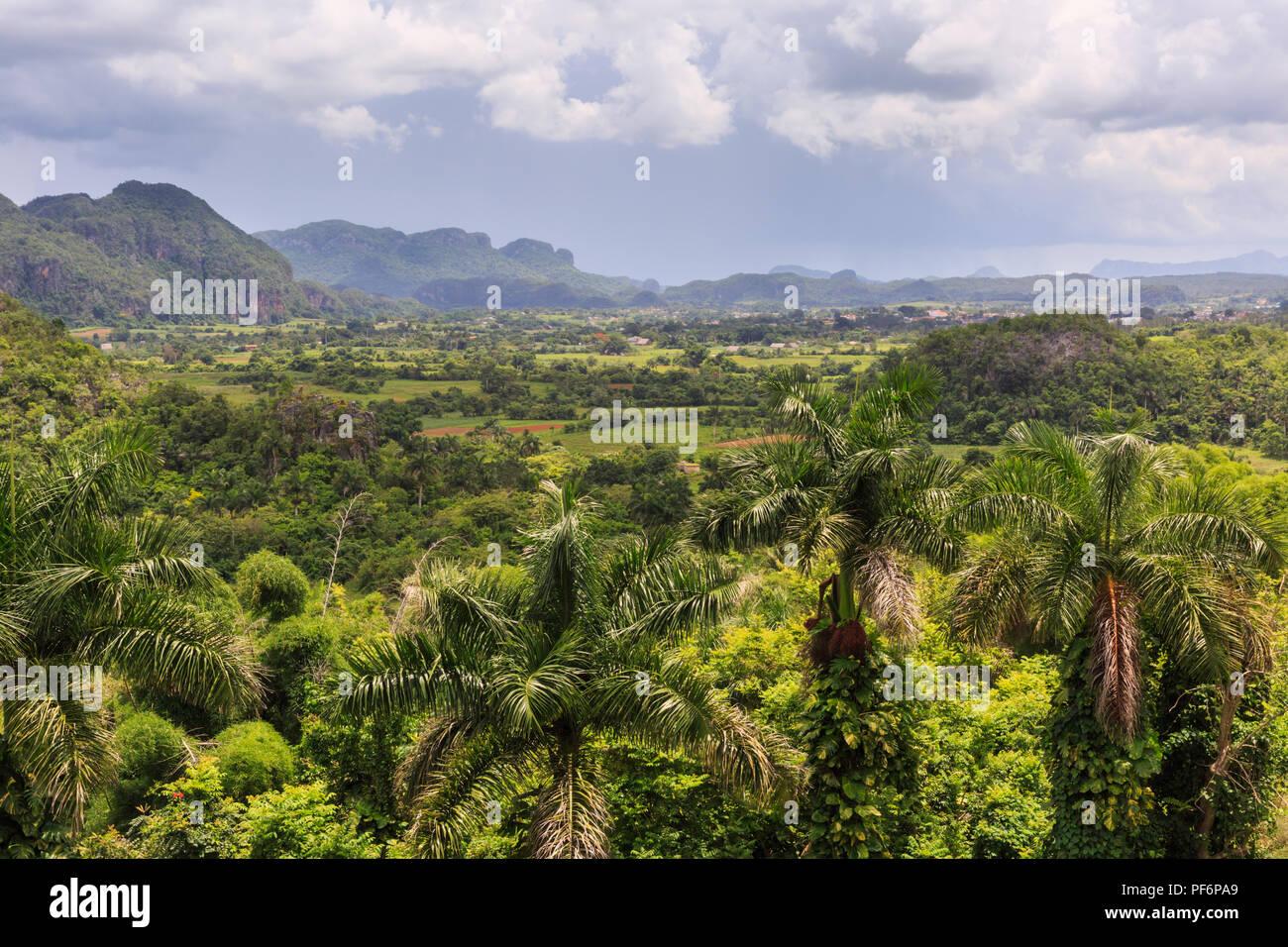 Valle de Viñales, vista panorámica a través de exuberante paisaje verde, provincia de Pinar del Río, Cuba Imagen De Stock