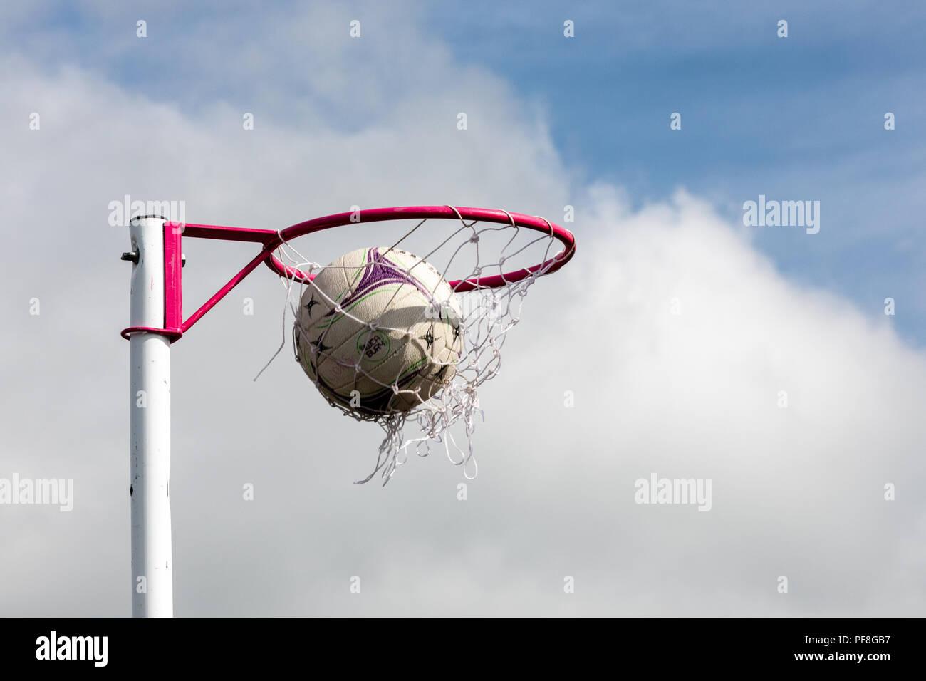 El balonvolea puestos con el balonvolea atravesando la red marcó un gol contra un cielo azul. Imagen De Stock