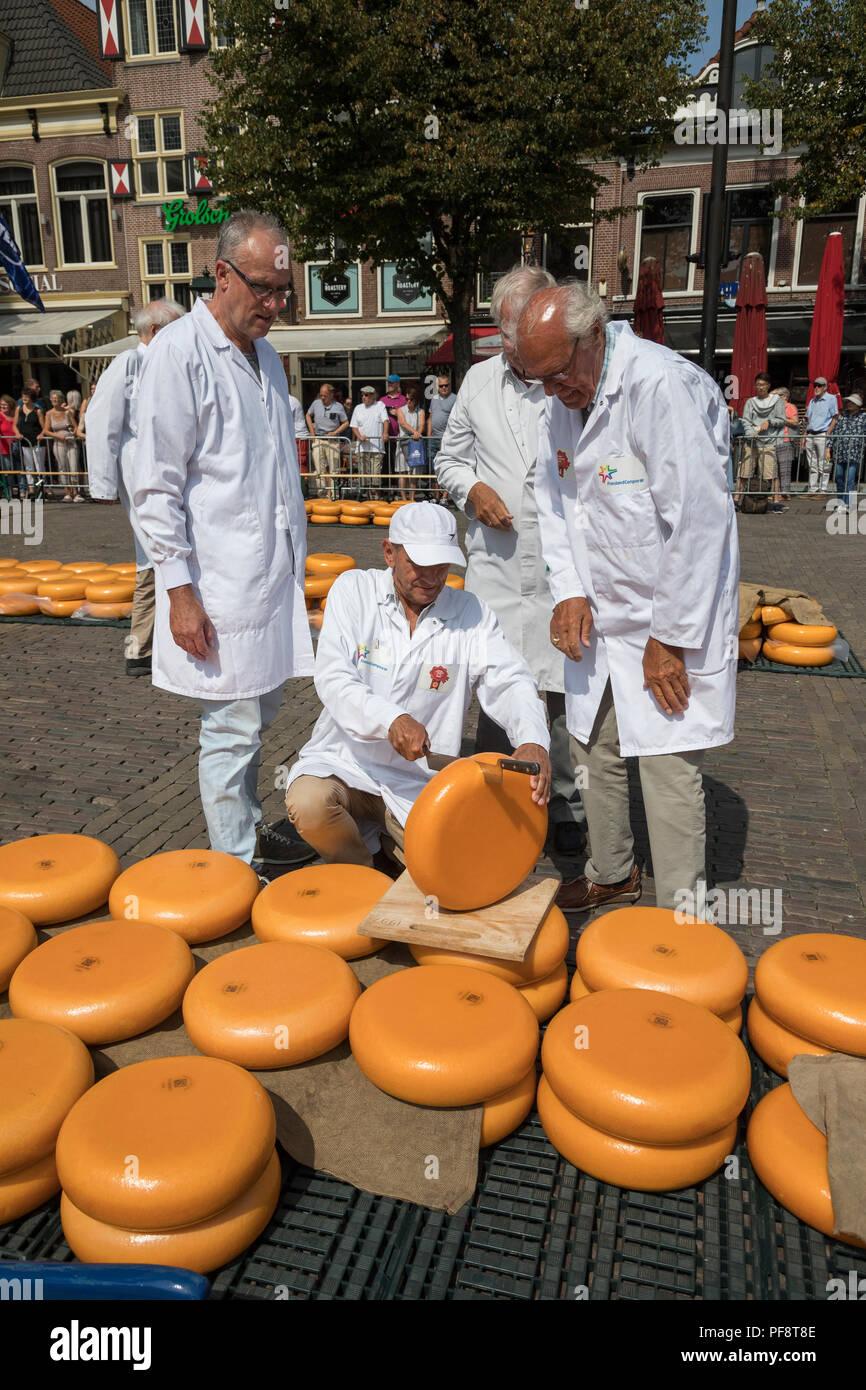 Alkmaar, Holanda - 20 de julio de 2018: el grupo de inspectores pruebas y aprobar la calidad del queso en el mercado de quesos de Alkmaar Imagen De Stock