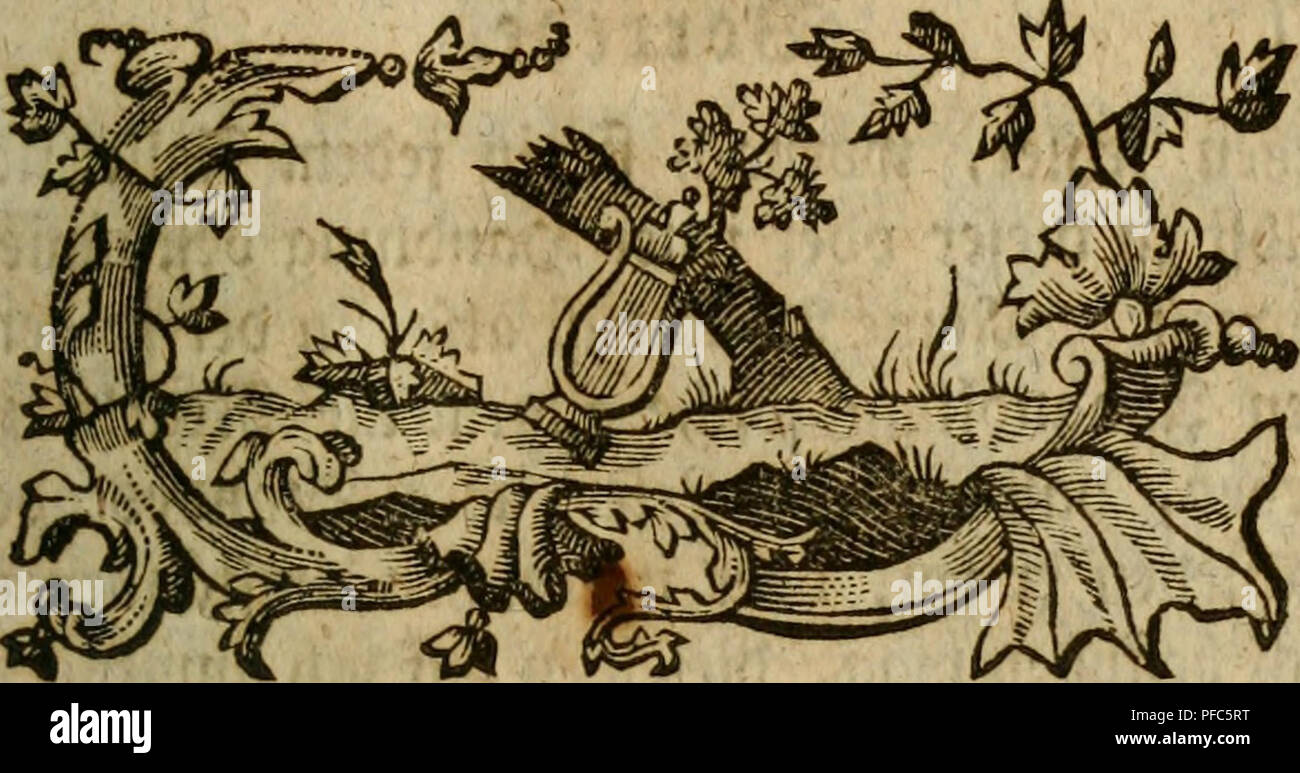 . Der Hausvater ... La agricultura, la economía doméstica; la botánica; Agricultura; Ciencia; Plantas. SSovrete.. Por favor tenga en cuenta que estas imágenes son extraídas de la página escaneada imágenes que podrían haber sido mejoradas digitalmente para mejorar la legibilidad, la coloración y el aspecto de estas ilustraciones pueden no parecerse perfectamente a la obra original. Münchhausen, Otto, Freiherr von, 1716-1774. Hannover, Försters und Sohns Erben Foto de stock