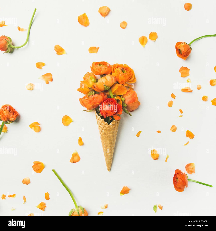 Cono de waffle con orange buttercup flores sobre fondo blanco. Imagen De Stock