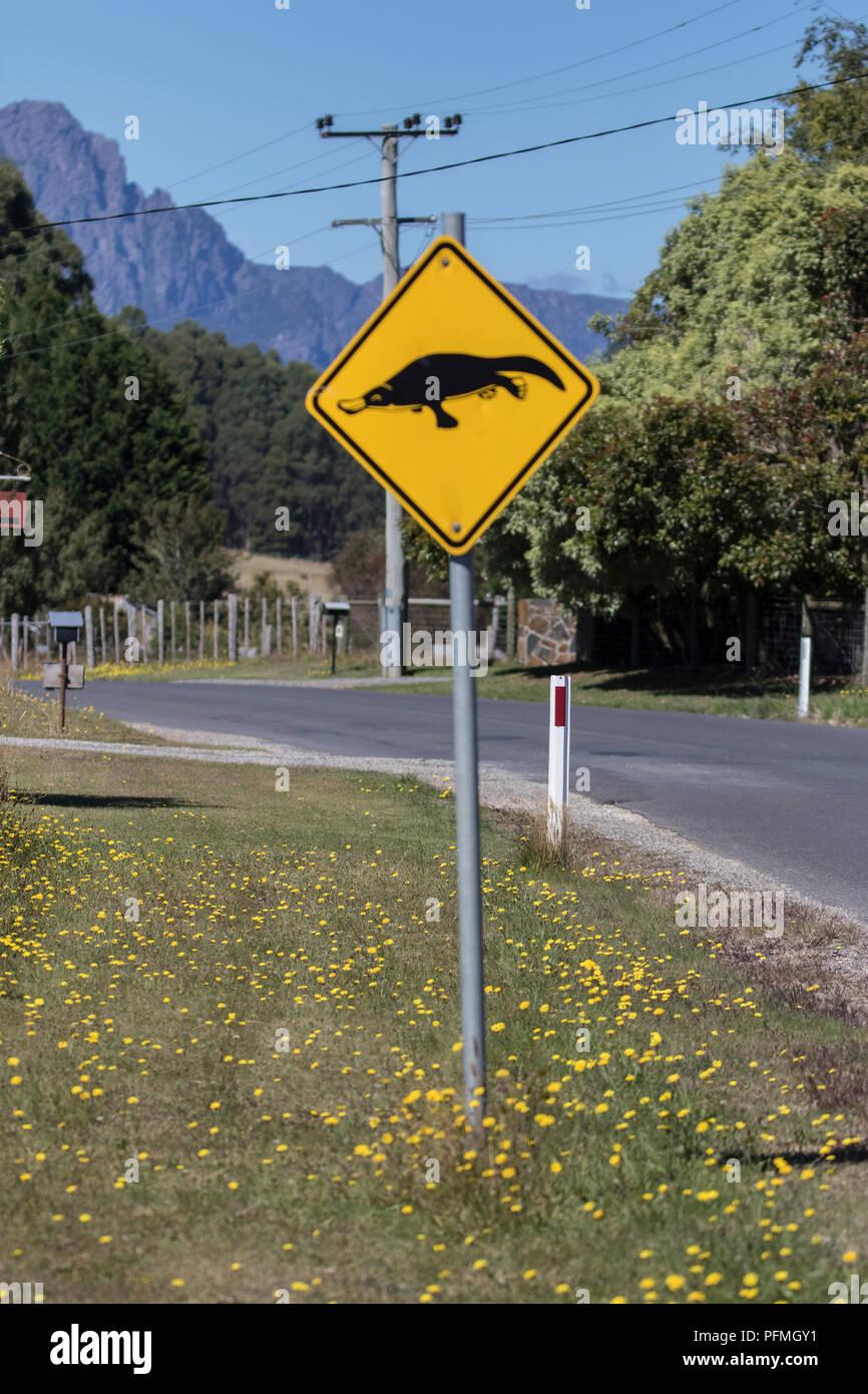 Observe ornitorrinco señales de carretera Imagen De Stock