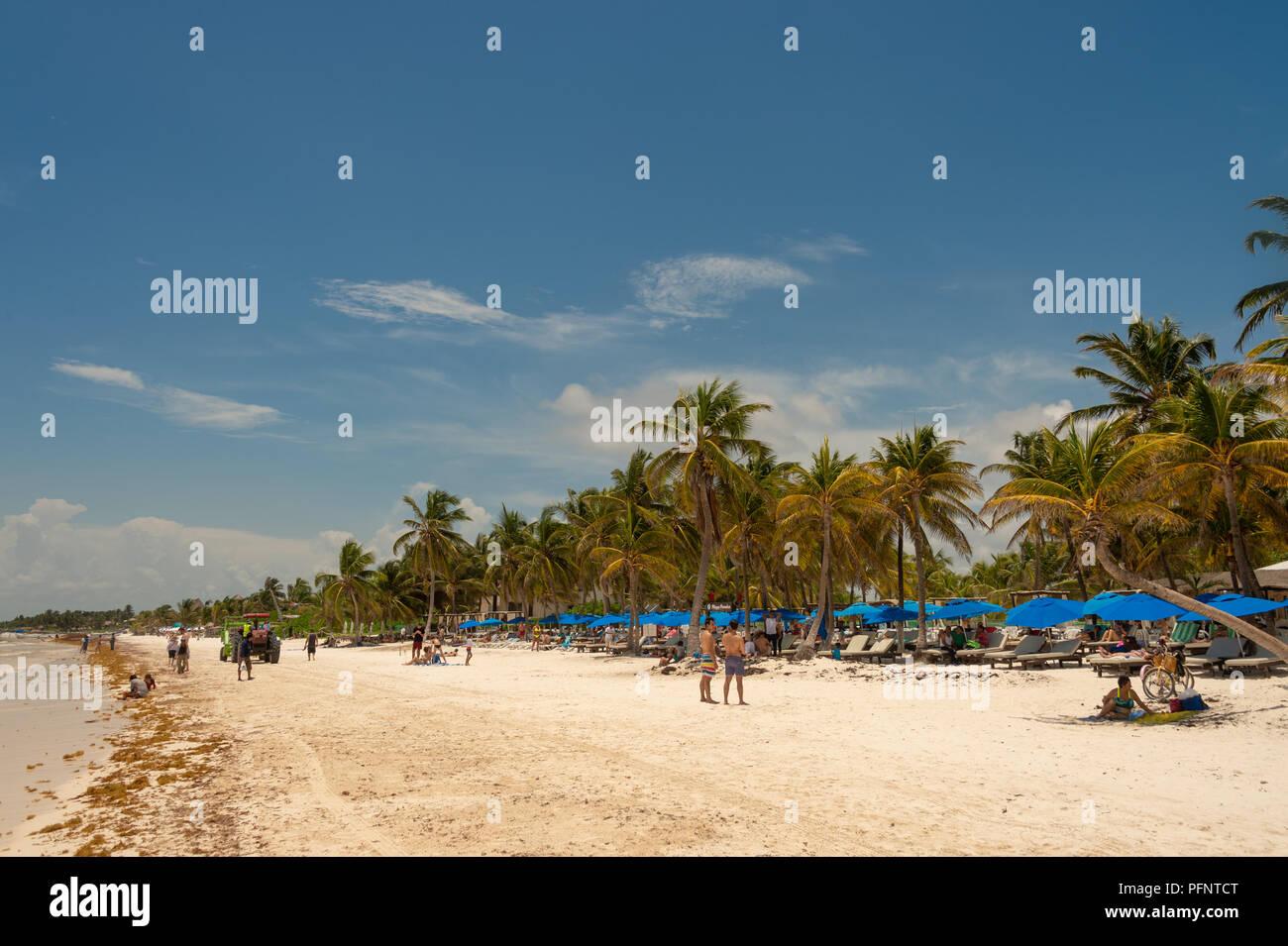 Tulum, México - 12 de agosto de 2018: Vista de Playa Paraiso Playa cerca de Tulum. Imagen De Stock