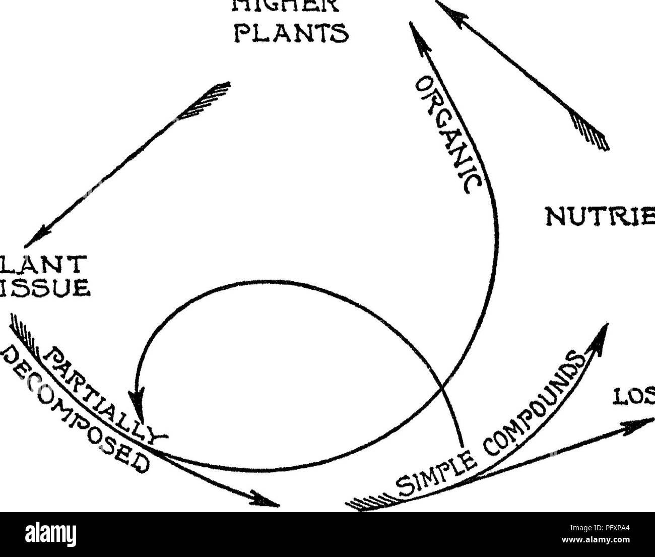 La naturaleza y las propiedades de los suelos; un colegio ... on