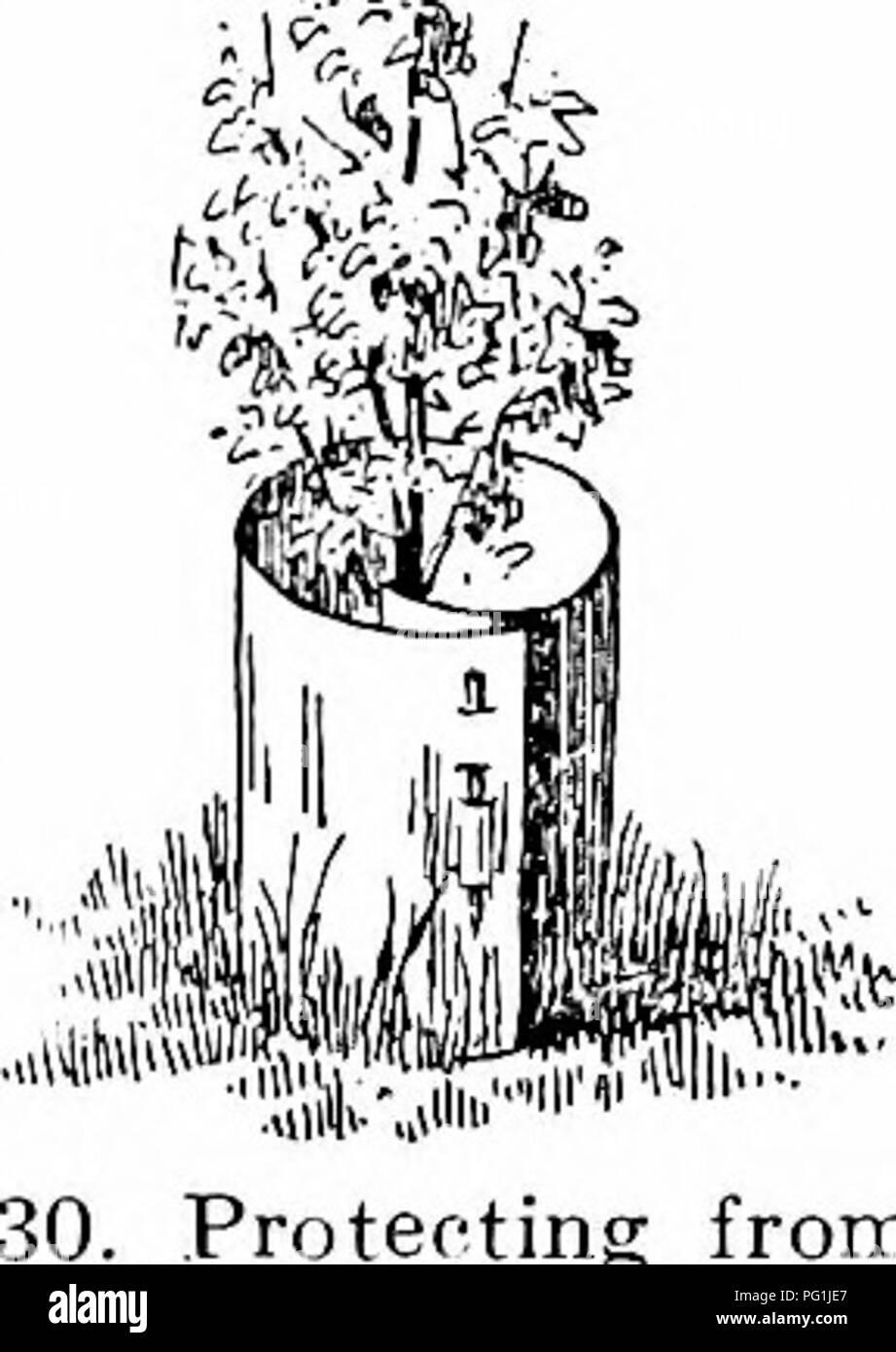Manual De Jardinería Una Guía Práctica Para La Elaboración De