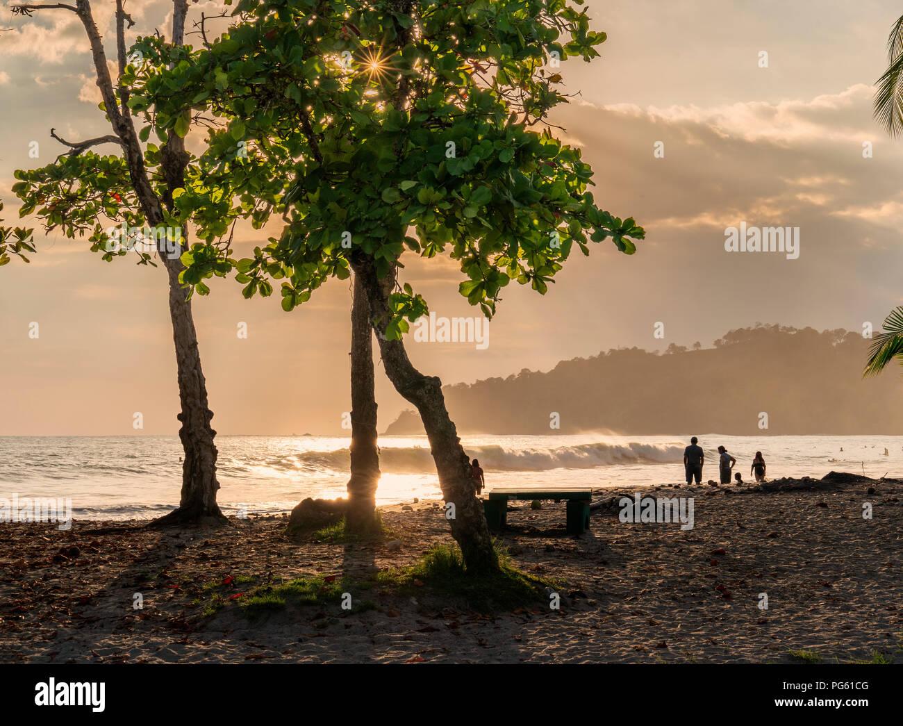 Playa, Parque Nacional Corcovado, Península de Osa, Costa Rica. Foto de stock