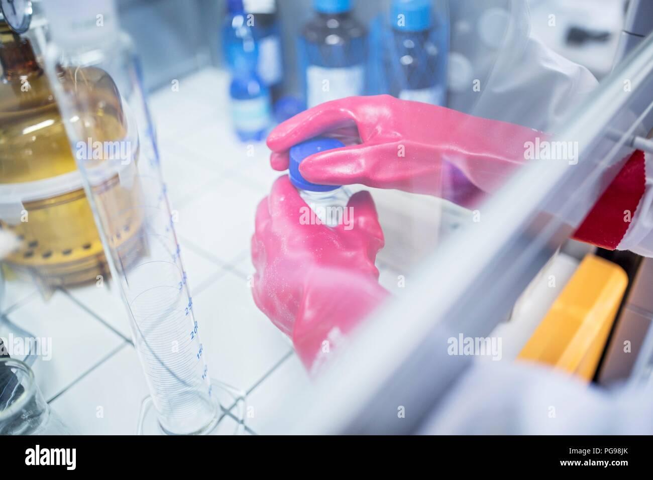 Técnico de laboratorio utilizando una campana de flujo laminar y guantes gruesos al trabajar con productos químicos peligrosos. Imagen De Stock