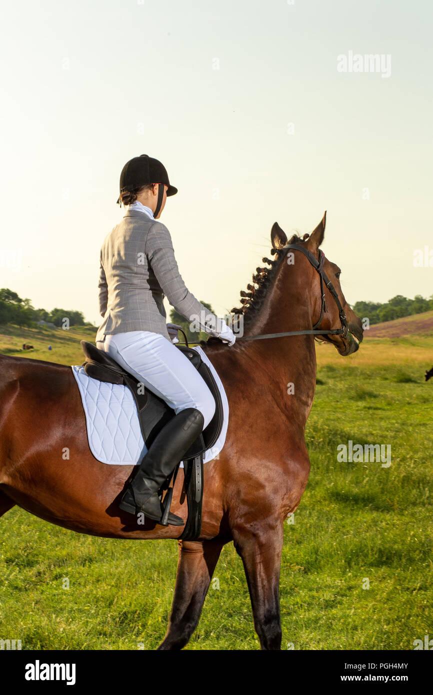 Mujer joven a caballo por el campo verde. Paseos a caballo. La competencia. Hobby Imagen De Stock