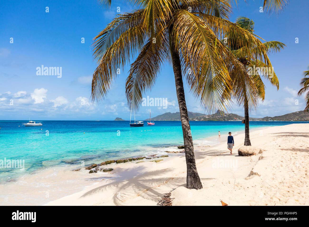 Tropical idílica playa de arena blanca, palmeras y aguas turquesas del Mar Caribe en la isla de Mayreau agua en San Vicente y las Granadinas Foto de stock