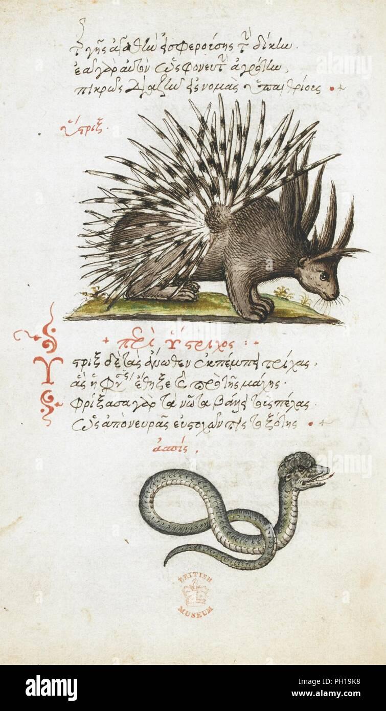 De Animalium Proprietate Dibujos En Lápiz Y Tinta De Un