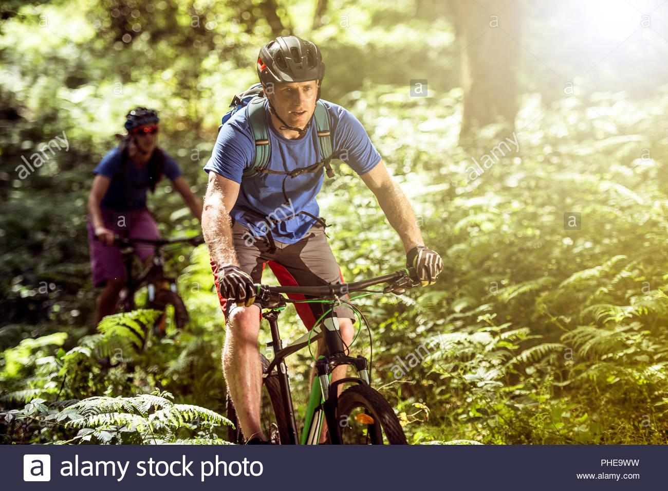 Par de ciclismo de montaña en el bosque Imagen De Stock