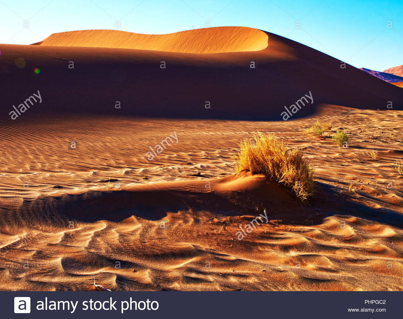 Paisaje desértico de Namibia Imagen De Stock