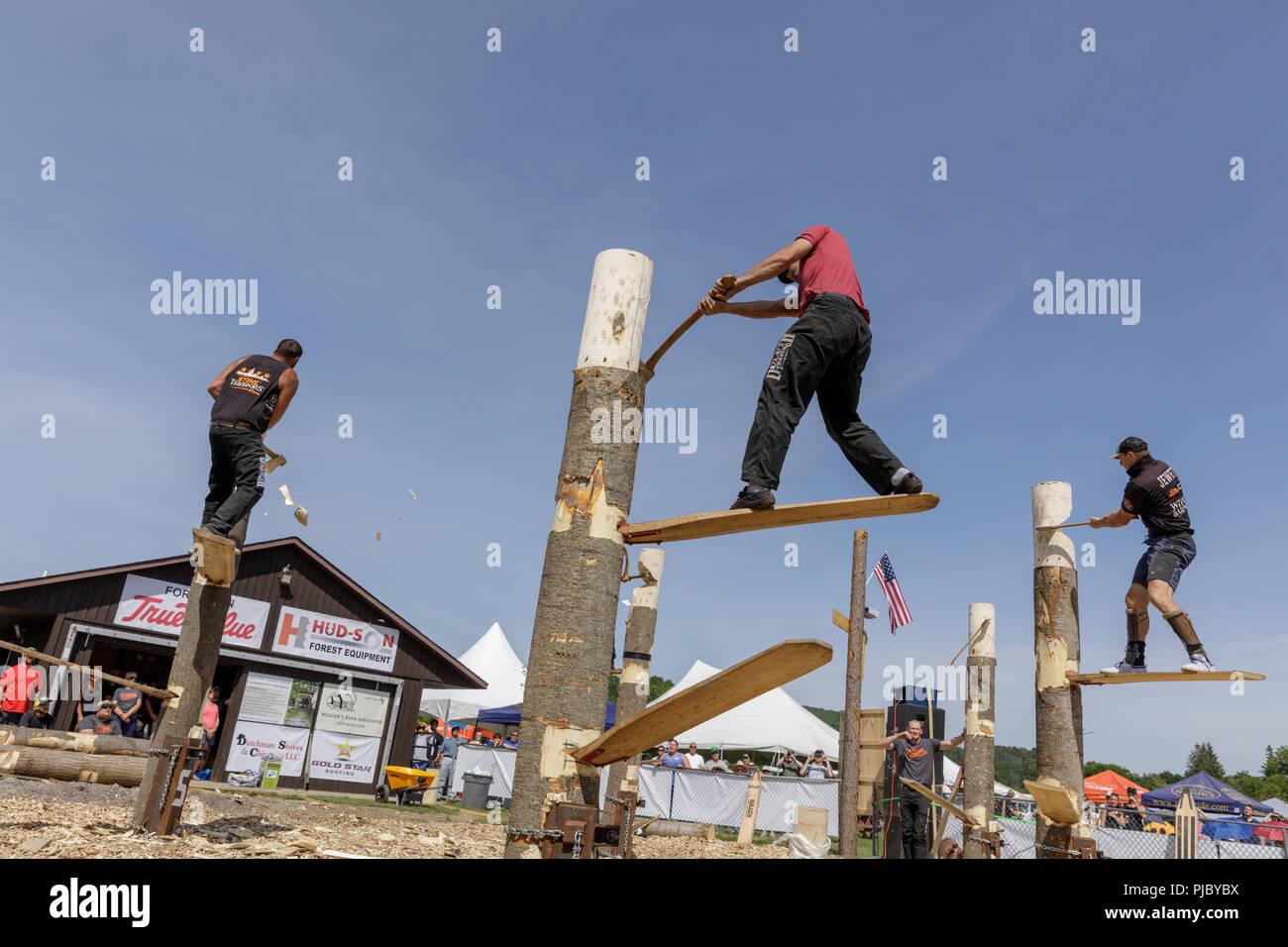 Los hombres compiten en la competencia de leñadores, Cherry Valley juegos al aire libre, Otsego County, Estado de Nueva York. Imagen De Stock