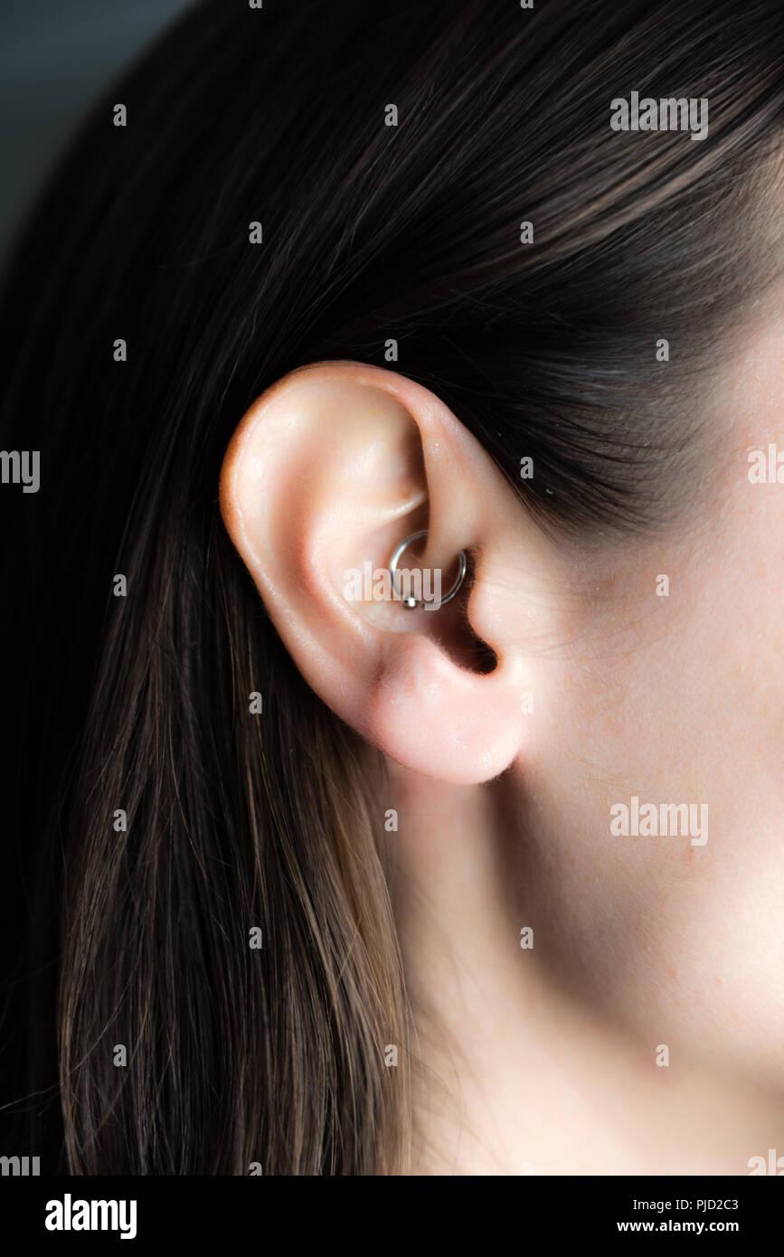 6f41a890791d Arete medicinales en la oreja para tratar dolores de cabeza Imagen De Stock