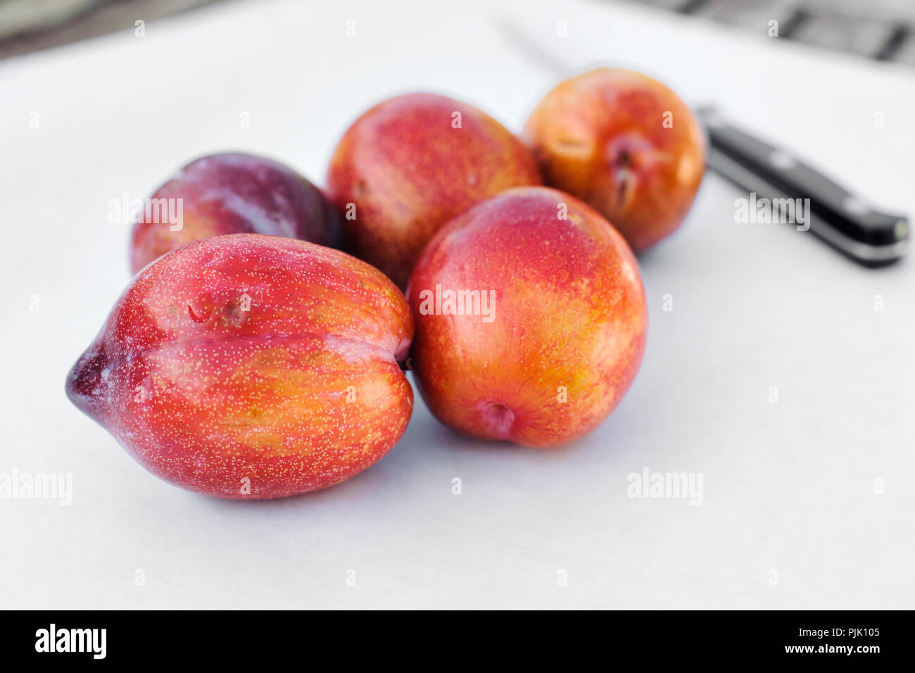Cinco frutas pluot amigo sobre papel blanco con un cuchillo Imagen De Stock