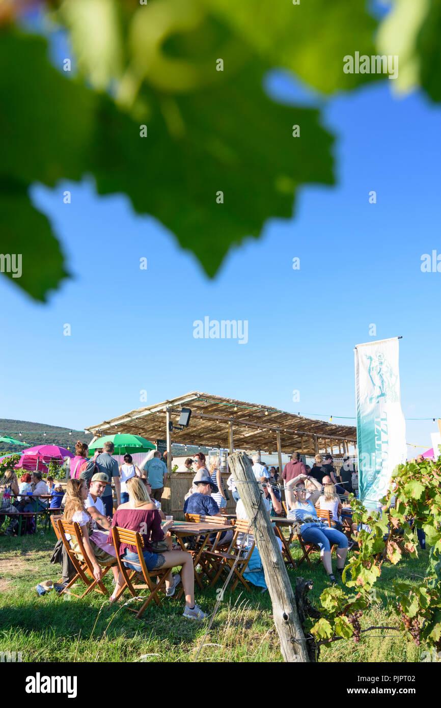 Pfaffstätten: viñedo, bar en el festival 'Genussmeile' a lo largo de 1ª ruta de senderismo de la tubería de agua de Viena, empresas vitícolas con el propio bares, visitantes, Wiener Foto de stock