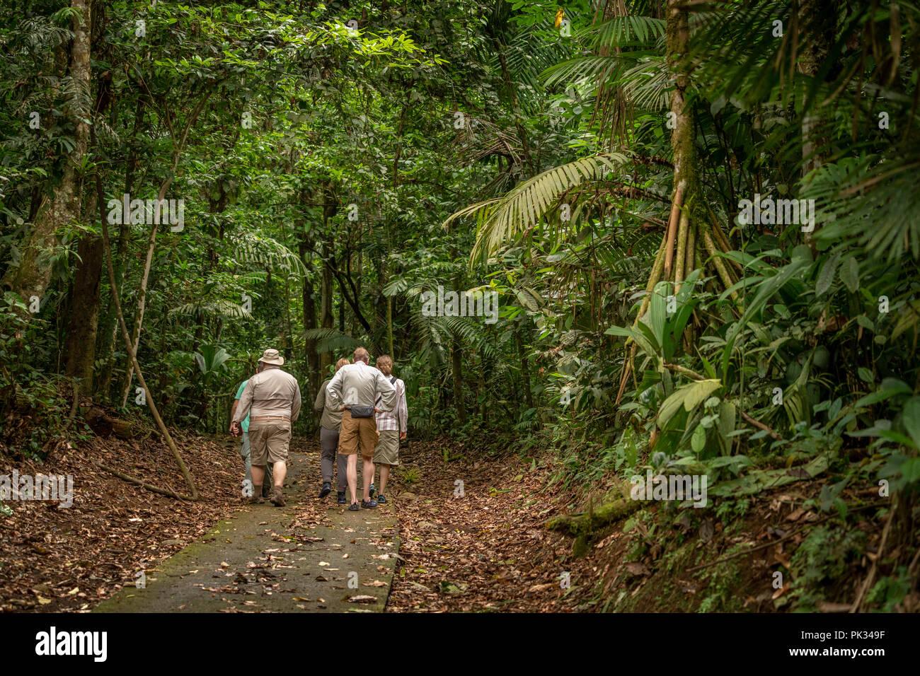 Los turistas, el Parque Nacional Volcán Tenorio, Costa Rica Imagen De Stock