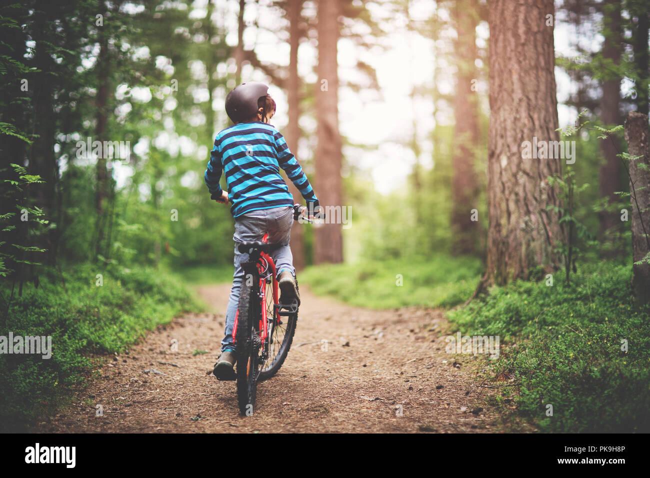 Niño en una bicicleta en el bosque en las primeras horas de la mañana Imagen De Stock