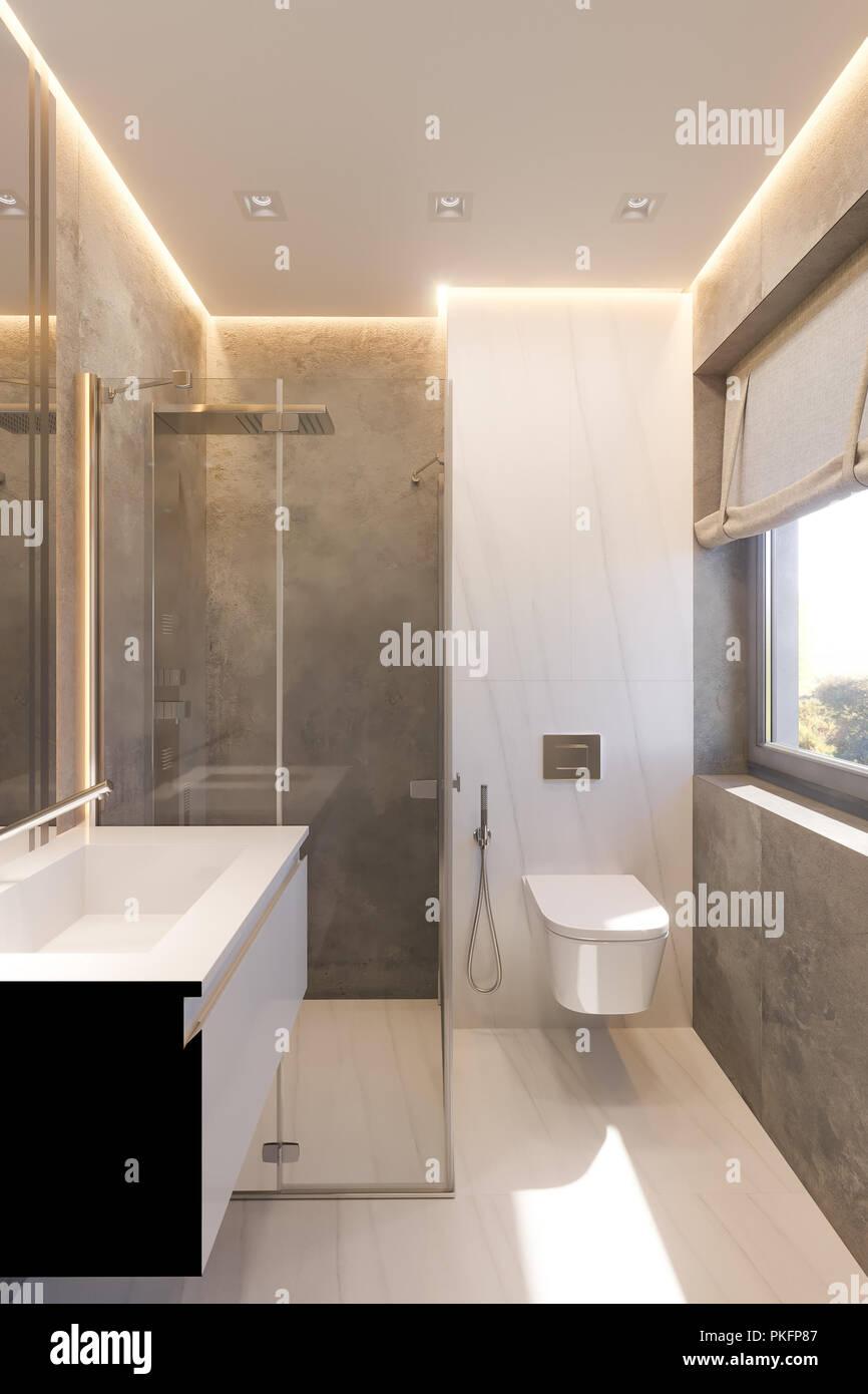 3D Render diseño interior del cuarto de baño con cabina de ducha de ...