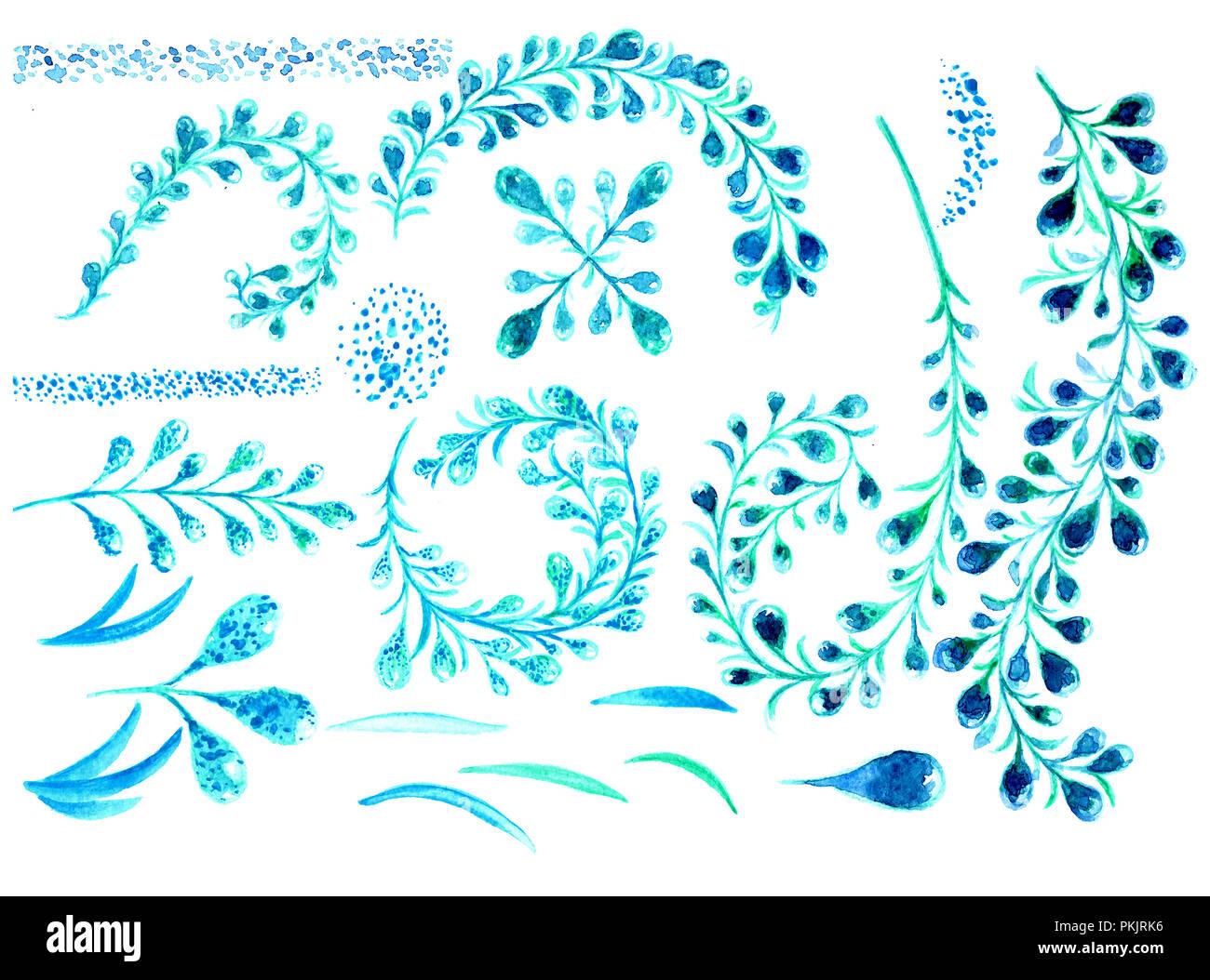 Conjunto Floral Acuarela Colorida Coleccion De Flores Azules Y