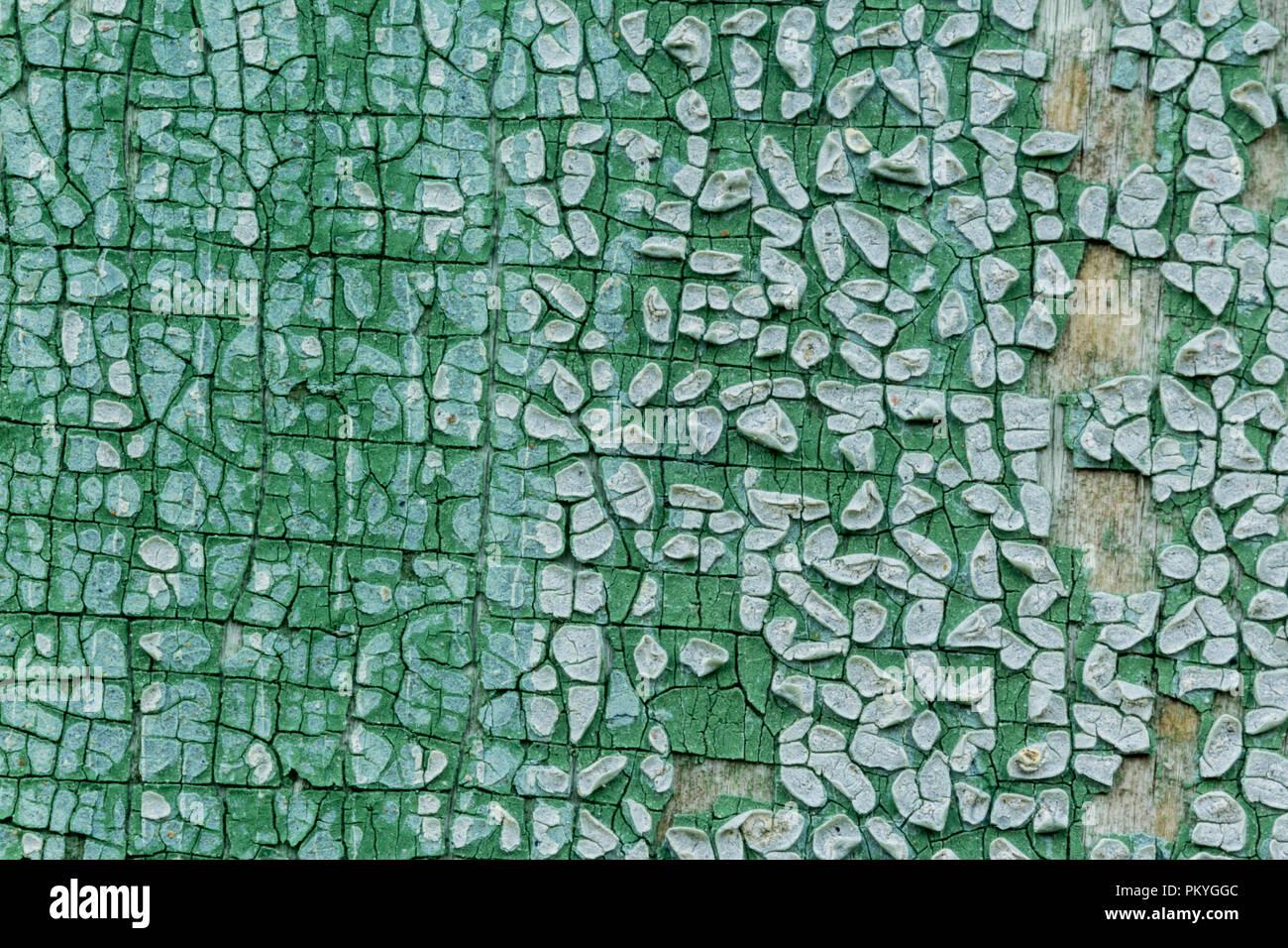 Macro Fotografía. La textura de una vieja pintura azul. Varias capas. La pared de madera de la casa fue lavada por la lluvia. Un buen fondo para diferentes sitios. Foto de stock