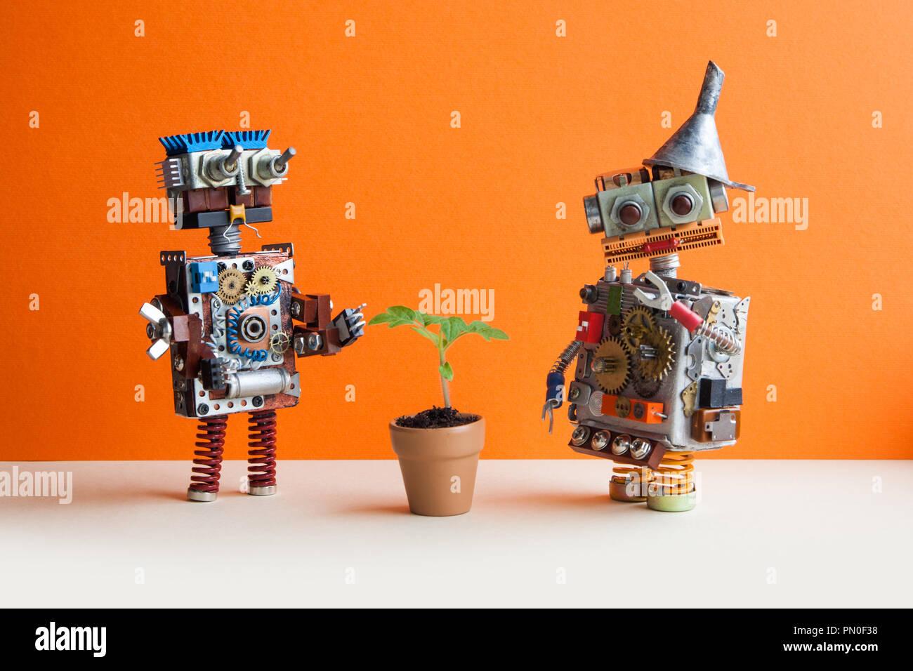 Dos robots cómicos y planta verde. Fondo pared naranja Imagen De Stock