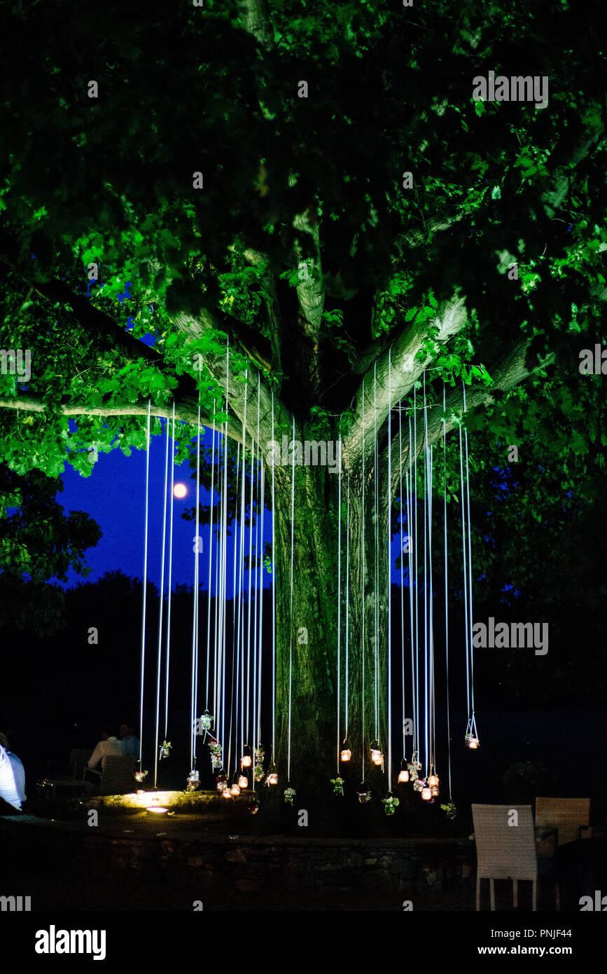 Velas colgando de un roble iluminan el jardín por la noche de fiesta Imagen  De Stock 328d767f7c5