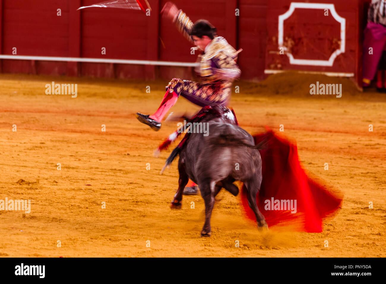 Bullfighter Clothing Imágenes De Stock   Bullfighter Clothing Fotos ... 9780bc7f616