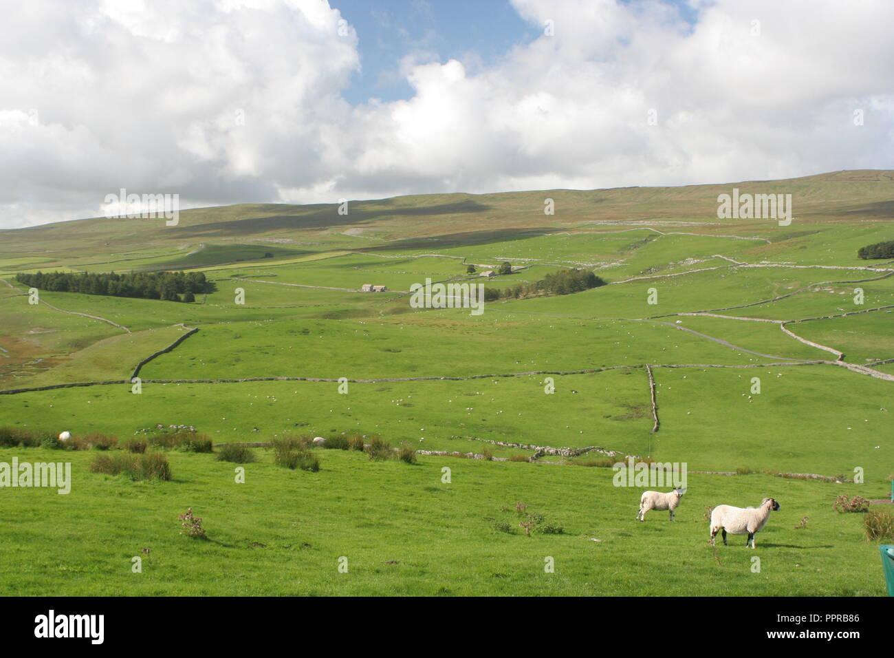 Valles de Yorkshire Foto de stock