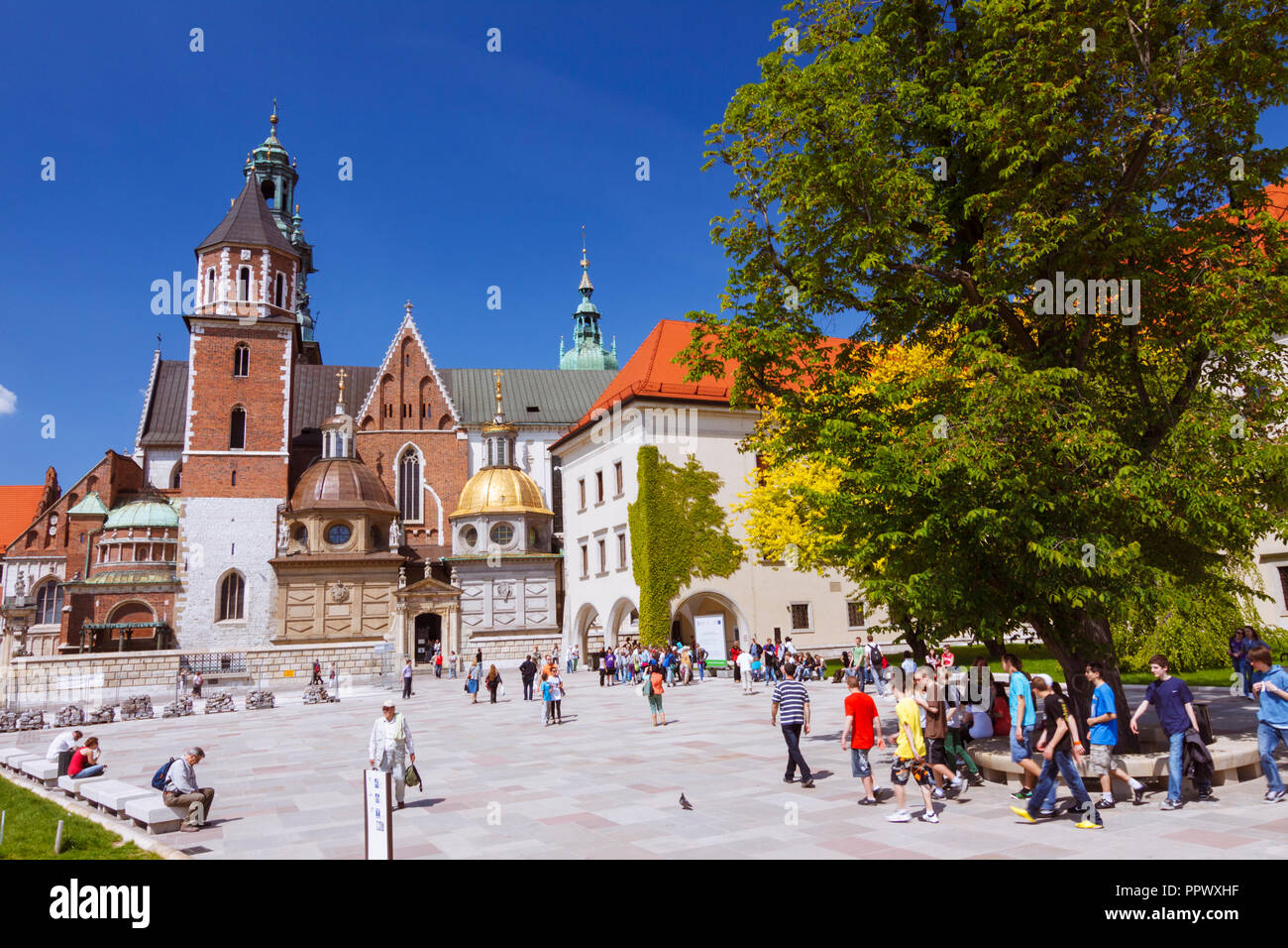 Cracovia, Polonia : Hay turistas que caminan alrededor de la catedral de Wawel sobre la colina de Wawel. Primero construido y destruido en el siglo XI; la construcción del curren Imagen De Stock