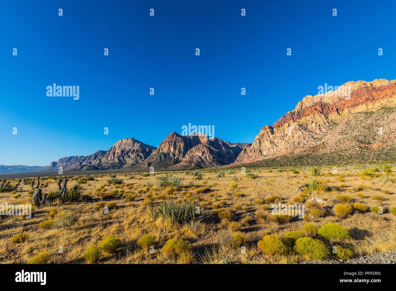 El Red Rock Canyon justo al oeste de Las Vegas, Nevada, EE.UU. Foto de stock