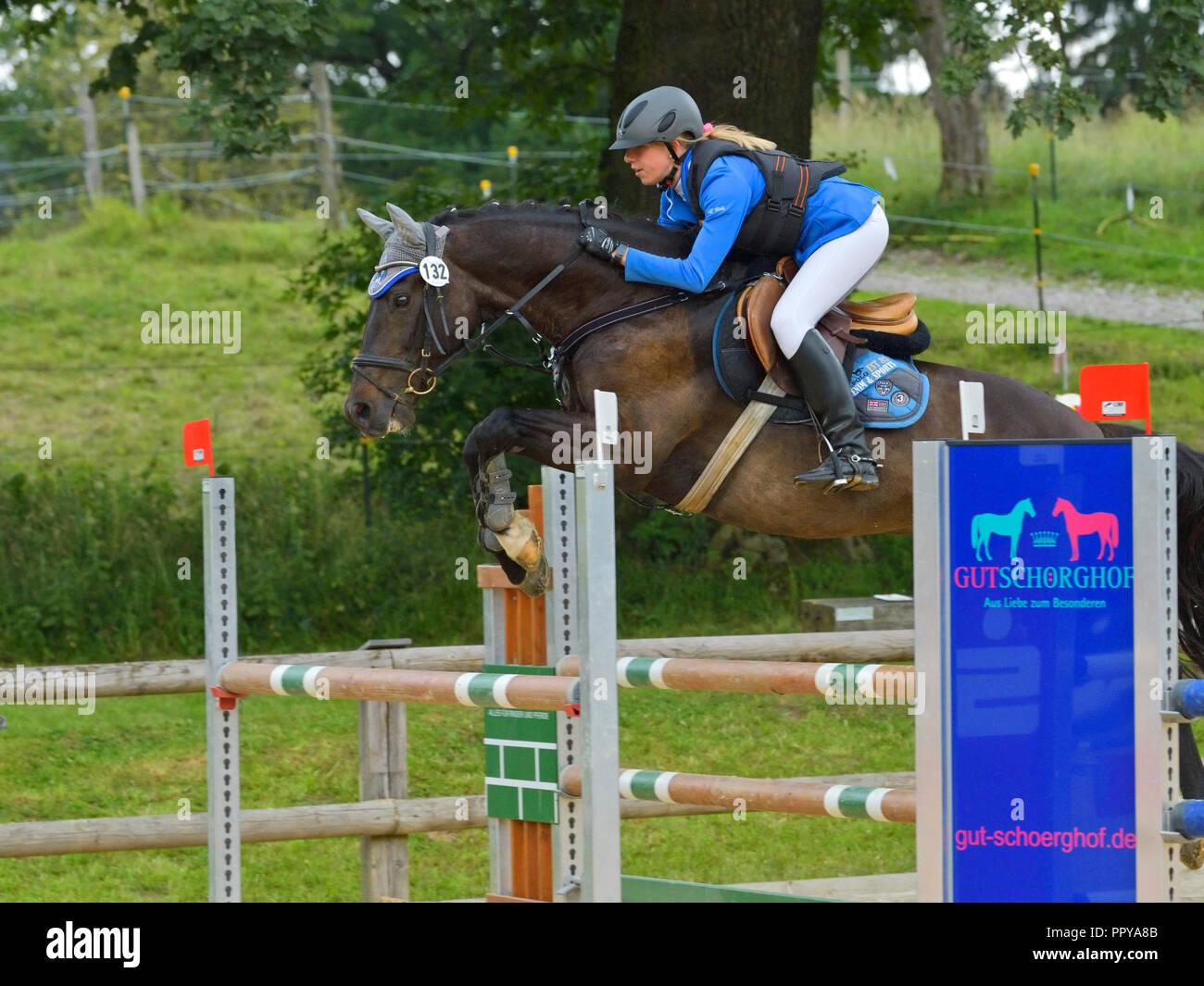 Salto de obstáculos Imagen De Stock