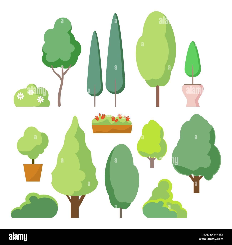 Dibujo Arbusto En Planta Wwwimagenesmycom