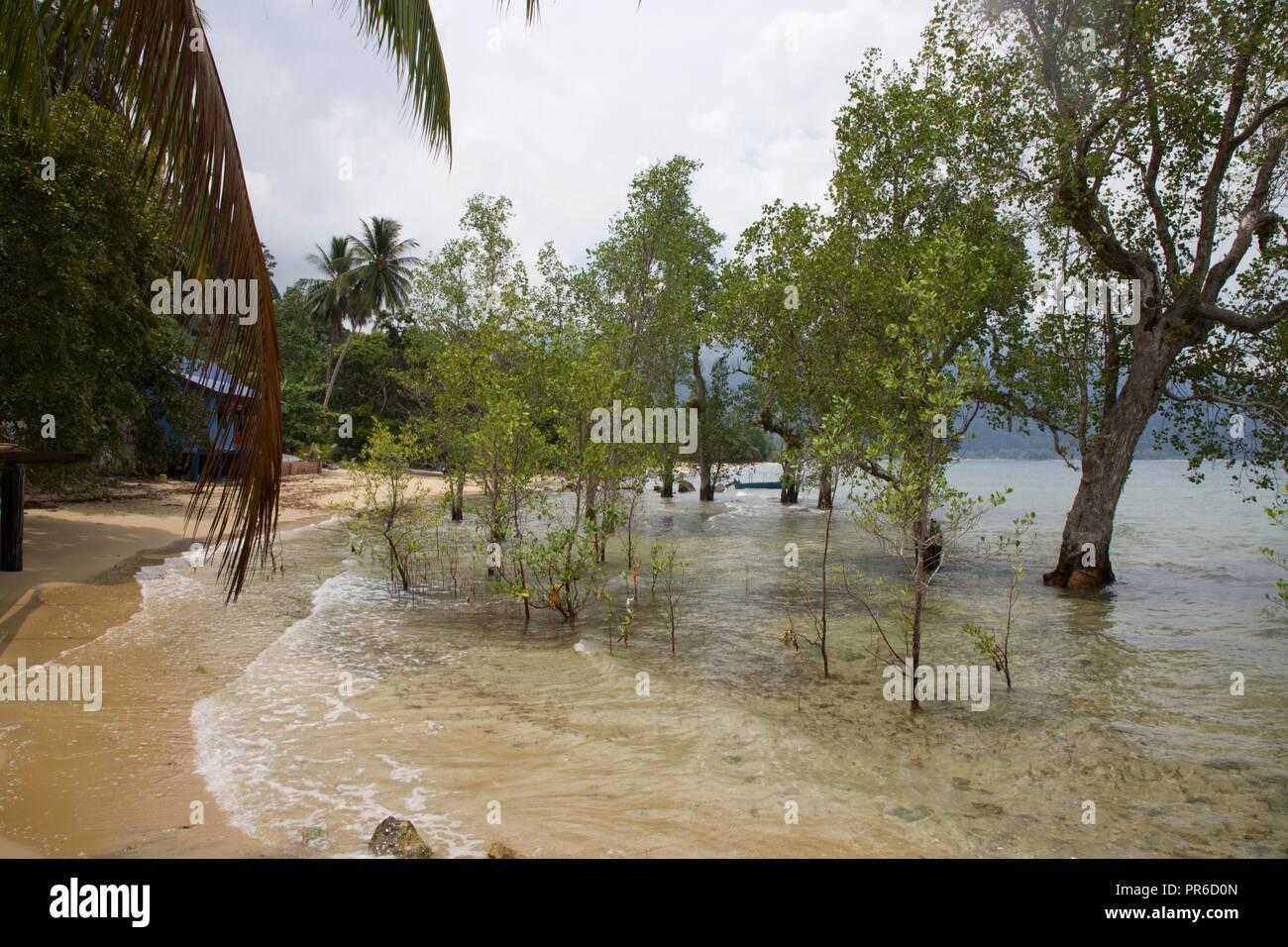 La isla de Tioman Foto de stock