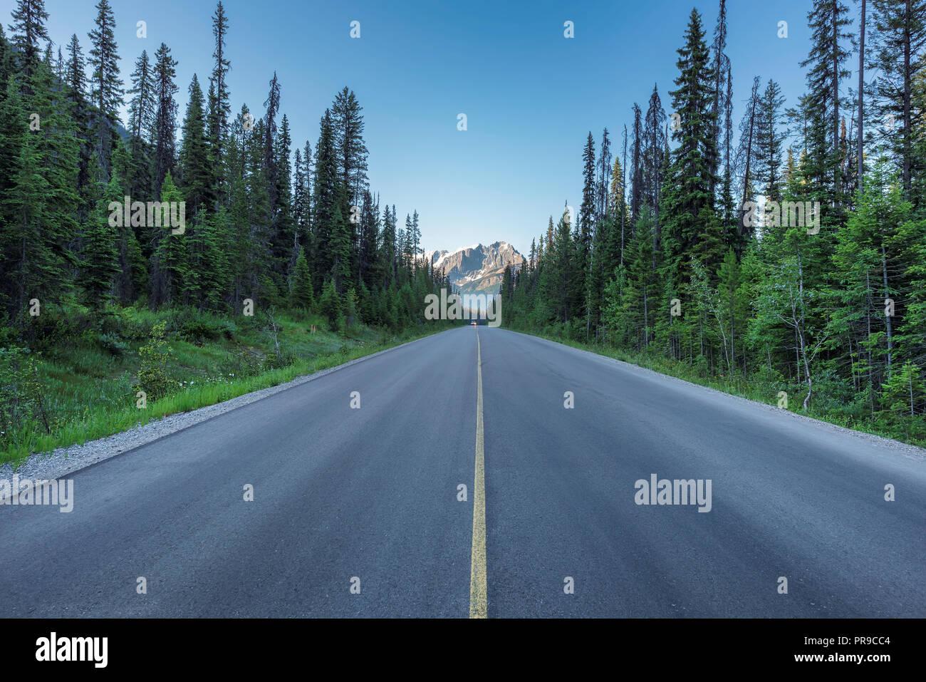 Viaje por carretera en Canadian Rockies Imagen De Stock