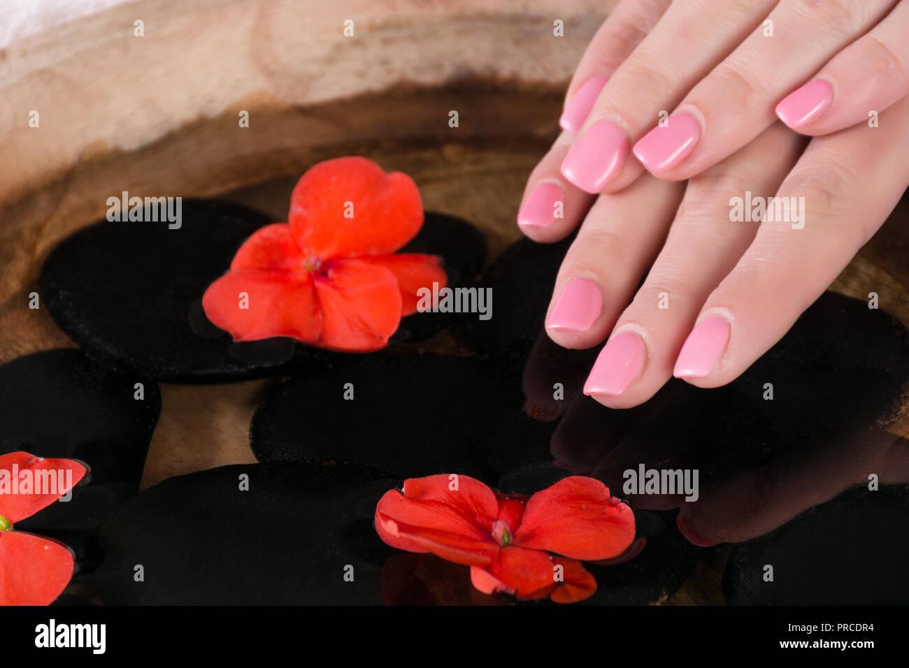 Mujer Dedo Con Rosa Manicura Uñas De Gel Polaca Sobre El
