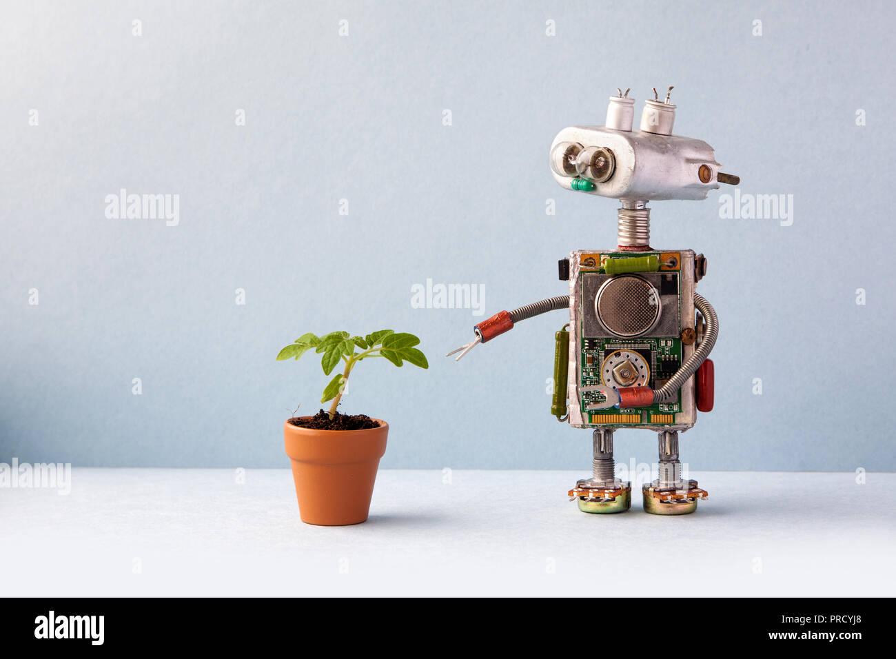 Con un pequeño robot verde de plantas germinadas en una maceta de barro. Eco del concepto de la vida orgánica. Pared gris de fondo, espacio de copia Foto de stock