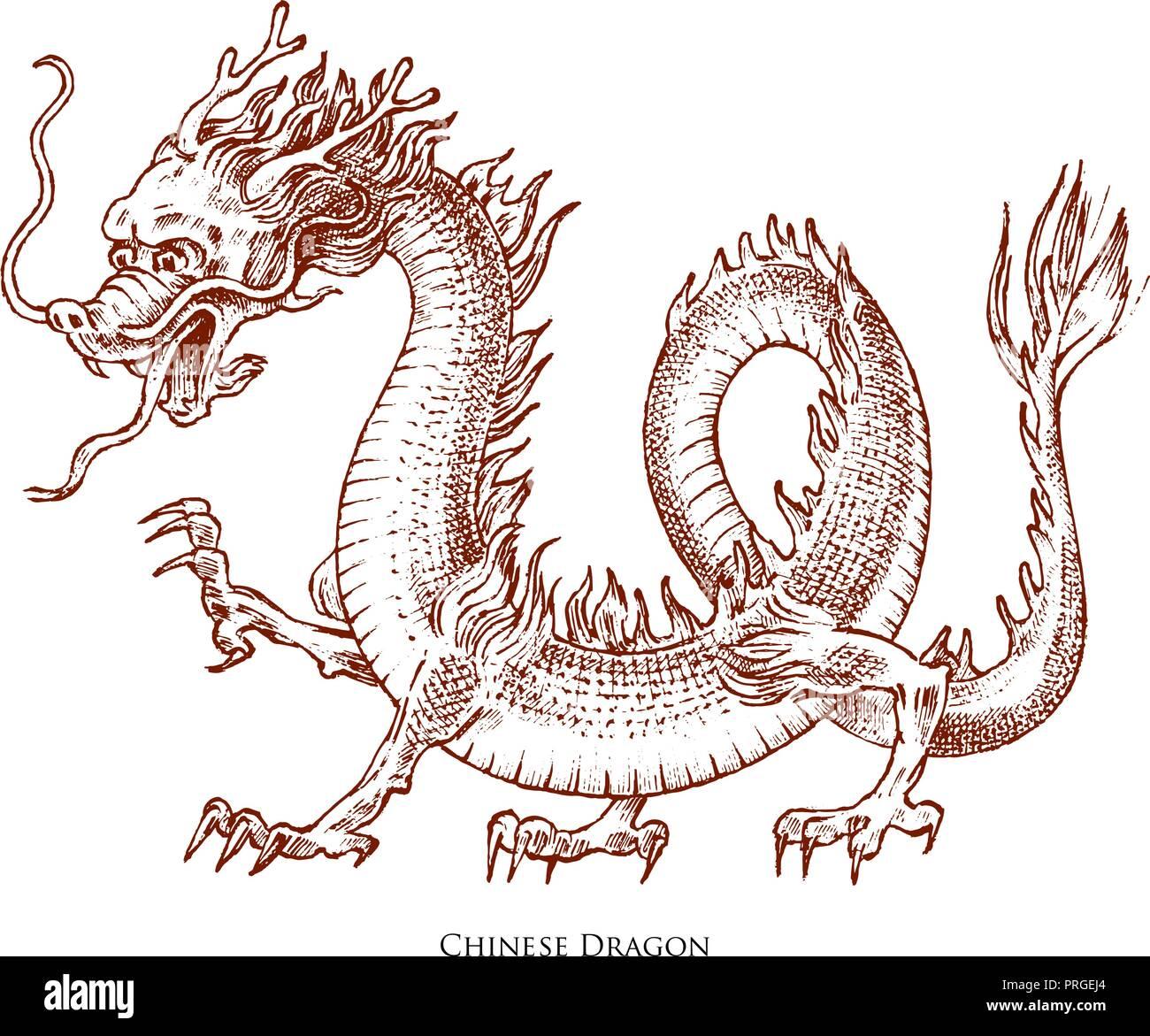 Bocetos De Tatuajes Tradicionales tribal dragon tattoo imágenes de stock & tribal dragon