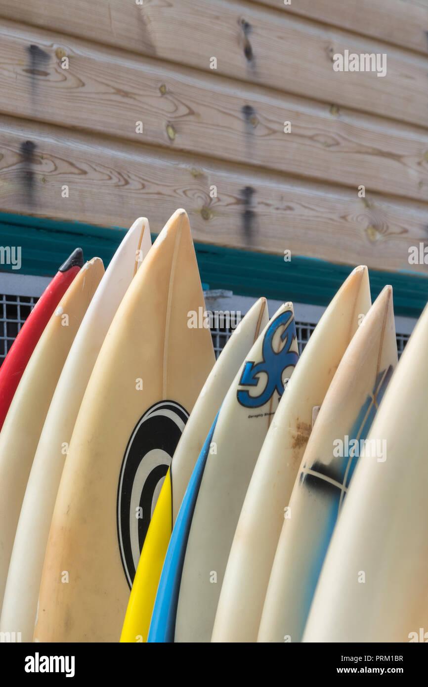Reflejo del mundo de surf, tablas de windsurf, surf y actividades / lifestyle en Newquay, Cornwall. Casa de Boardmasters Festival. Foto de stock