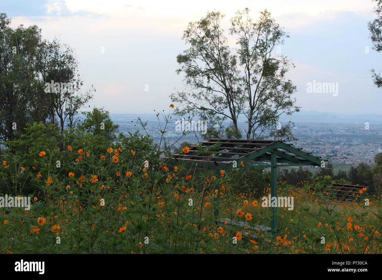 Foto tomada en el cerro de la reina en el municipio de Tonalá Jalisco México en donde se aprecia una vista panoramica de la ciudad de Guadalajara Jal Foto de stock