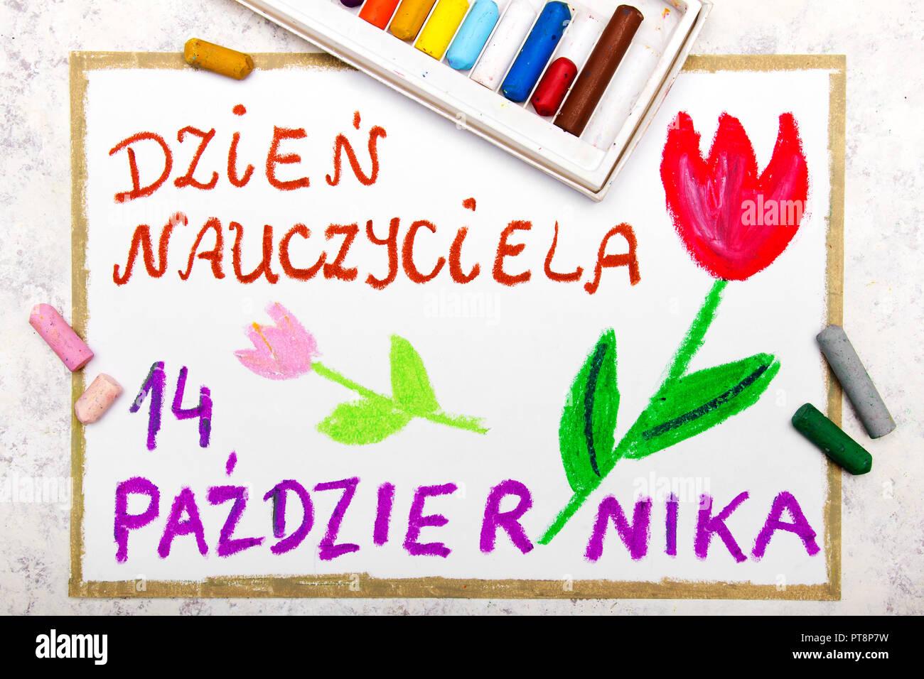 Coloridos Dibujos A Mano Tarjeta Para El Día Del Maestro Polaco Con